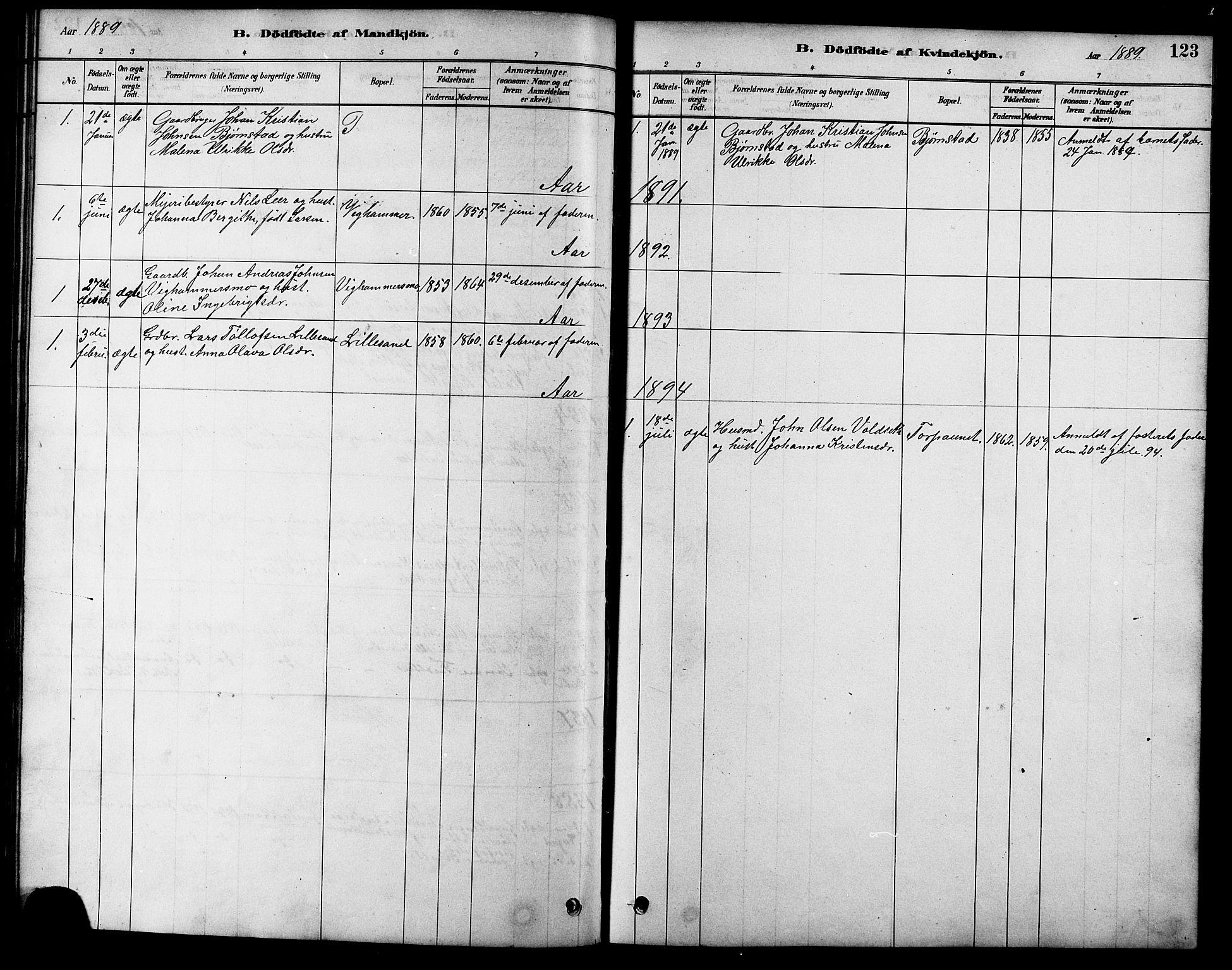 SAT, Ministerialprotokoller, klokkerbøker og fødselsregistre - Sør-Trøndelag, 616/L0423: Klokkerbok nr. 616C06, 1878-1903, s. 123