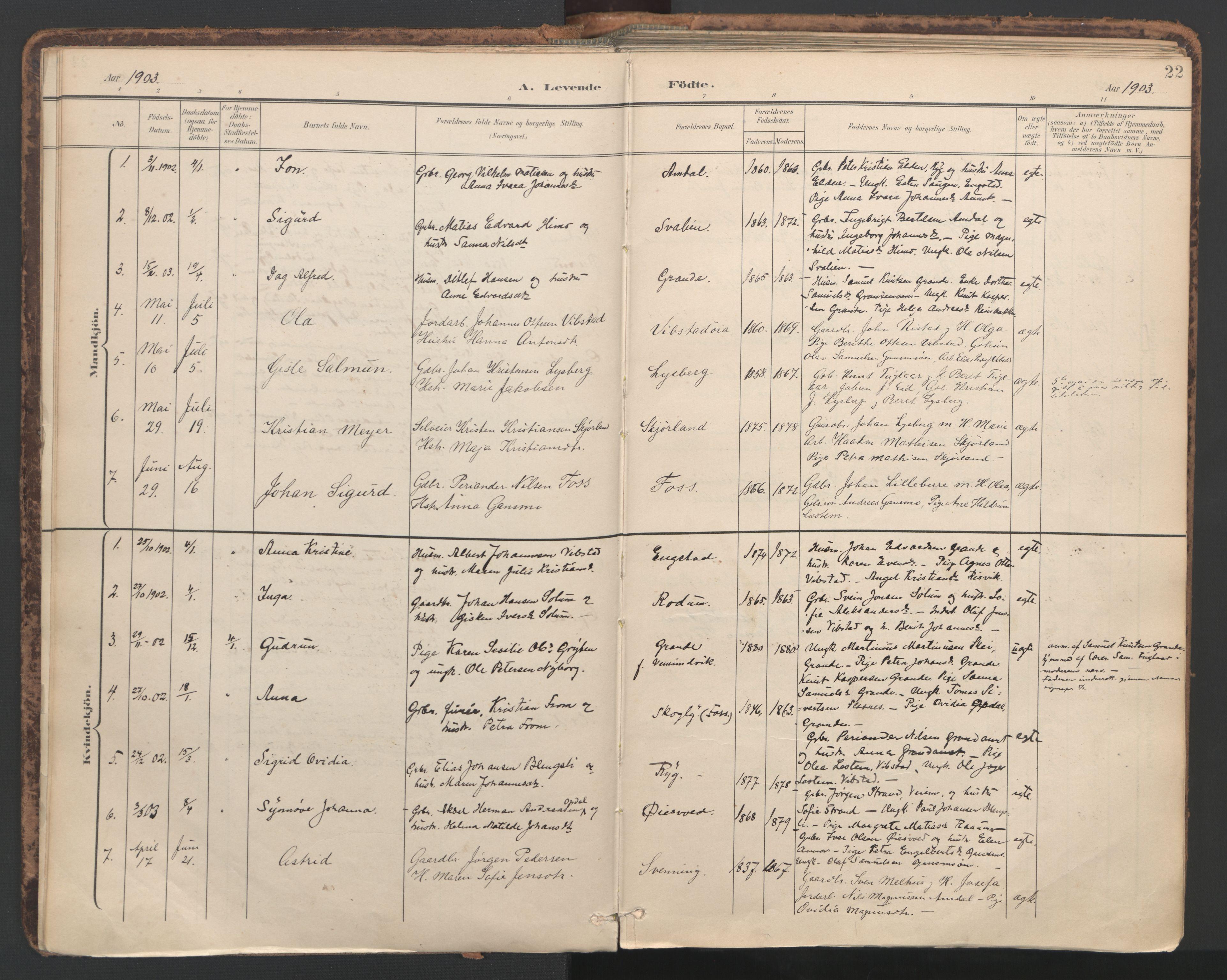 SAT, Ministerialprotokoller, klokkerbøker og fødselsregistre - Nord-Trøndelag, 764/L0556: Ministerialbok nr. 764A11, 1897-1924, s. 22