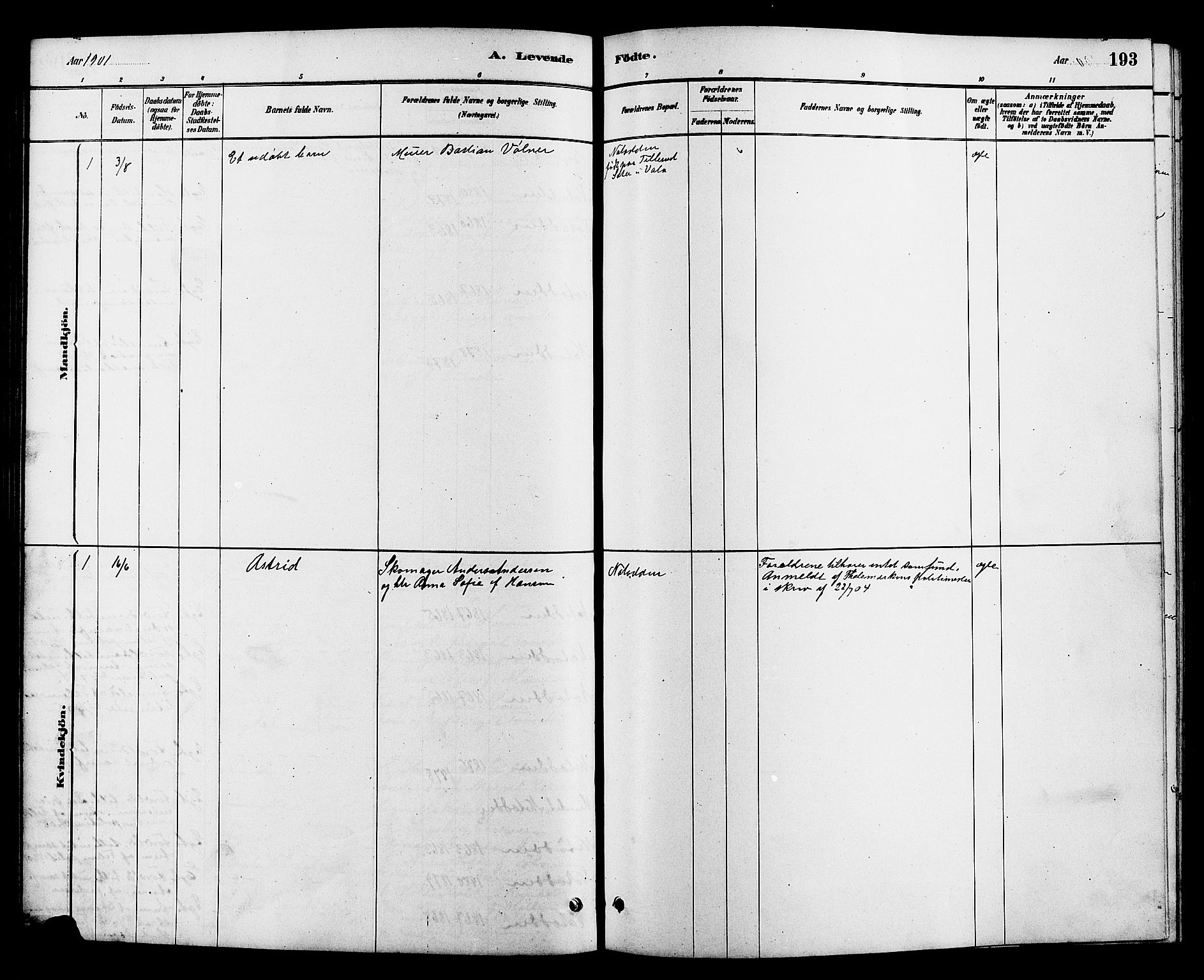 SAKO, Heddal kirkebøker, G/Ga/L0002: Klokkerbok nr. I 2, 1879-1908, s. 193