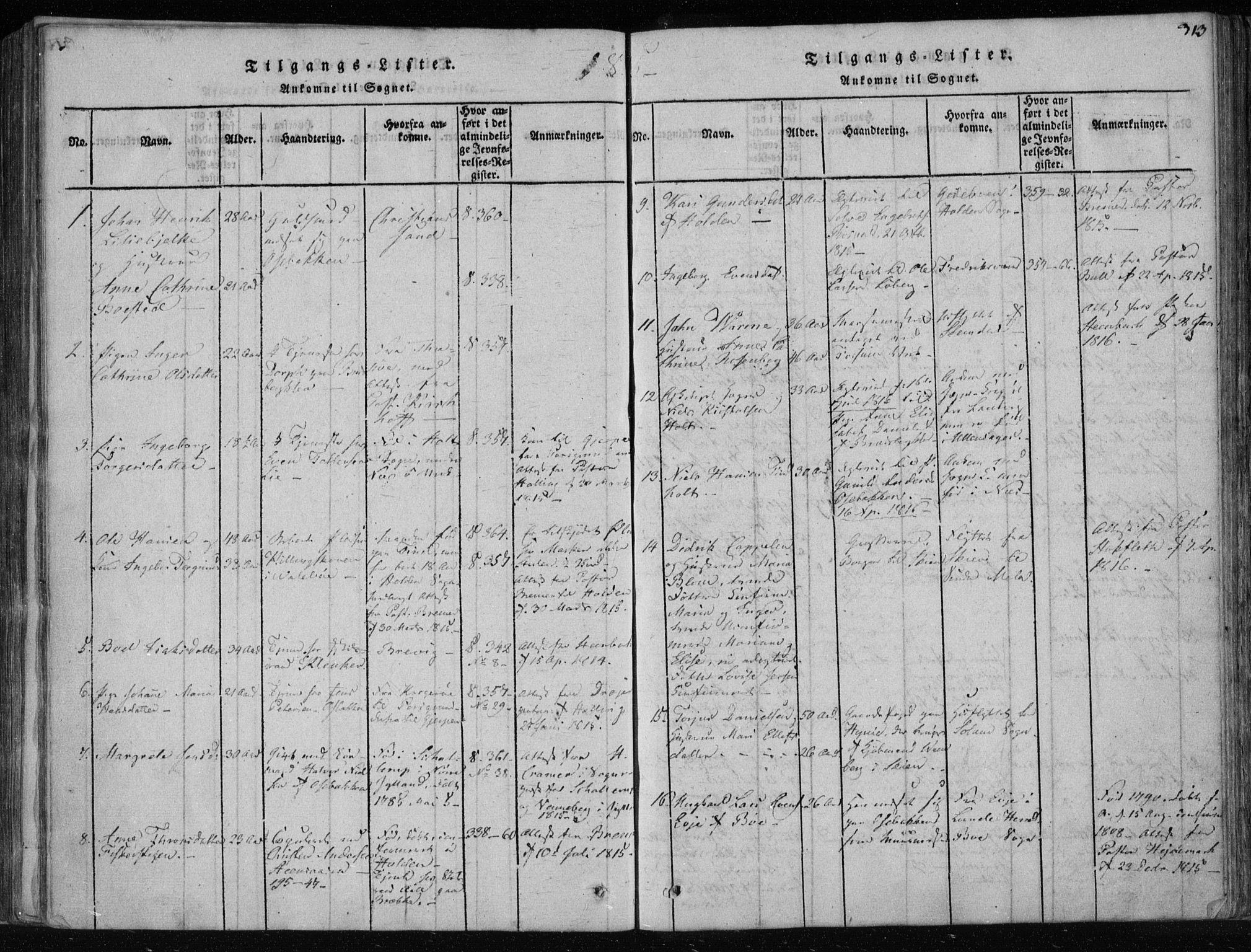 SAKO, Gjerpen kirkebøker, F/Fa/L0004: Ministerialbok nr. 4, 1814-1823, s. 313