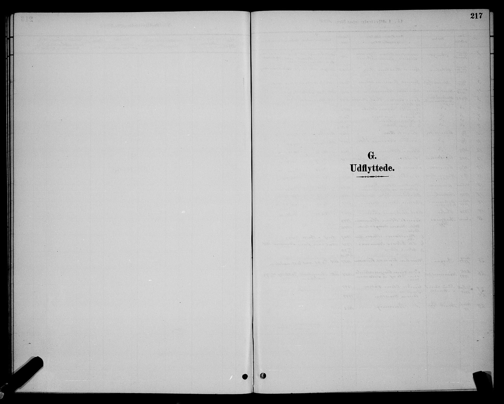 SAT, Ministerialprotokoller, klokkerbøker og fødselsregistre - Sør-Trøndelag, 604/L0223: Klokkerbok nr. 604C06, 1886-1897, s. 217