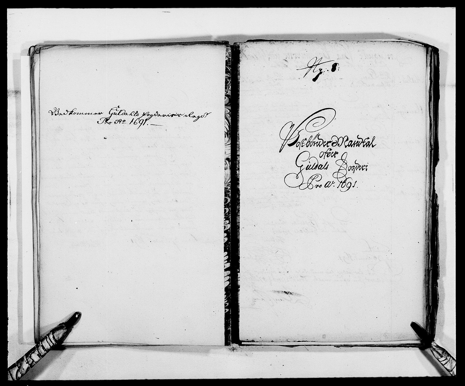 RA, Rentekammeret inntil 1814, Reviderte regnskaper, Fogderegnskap, R59/L3941: Fogderegnskap Gauldal, 1691, s. 197