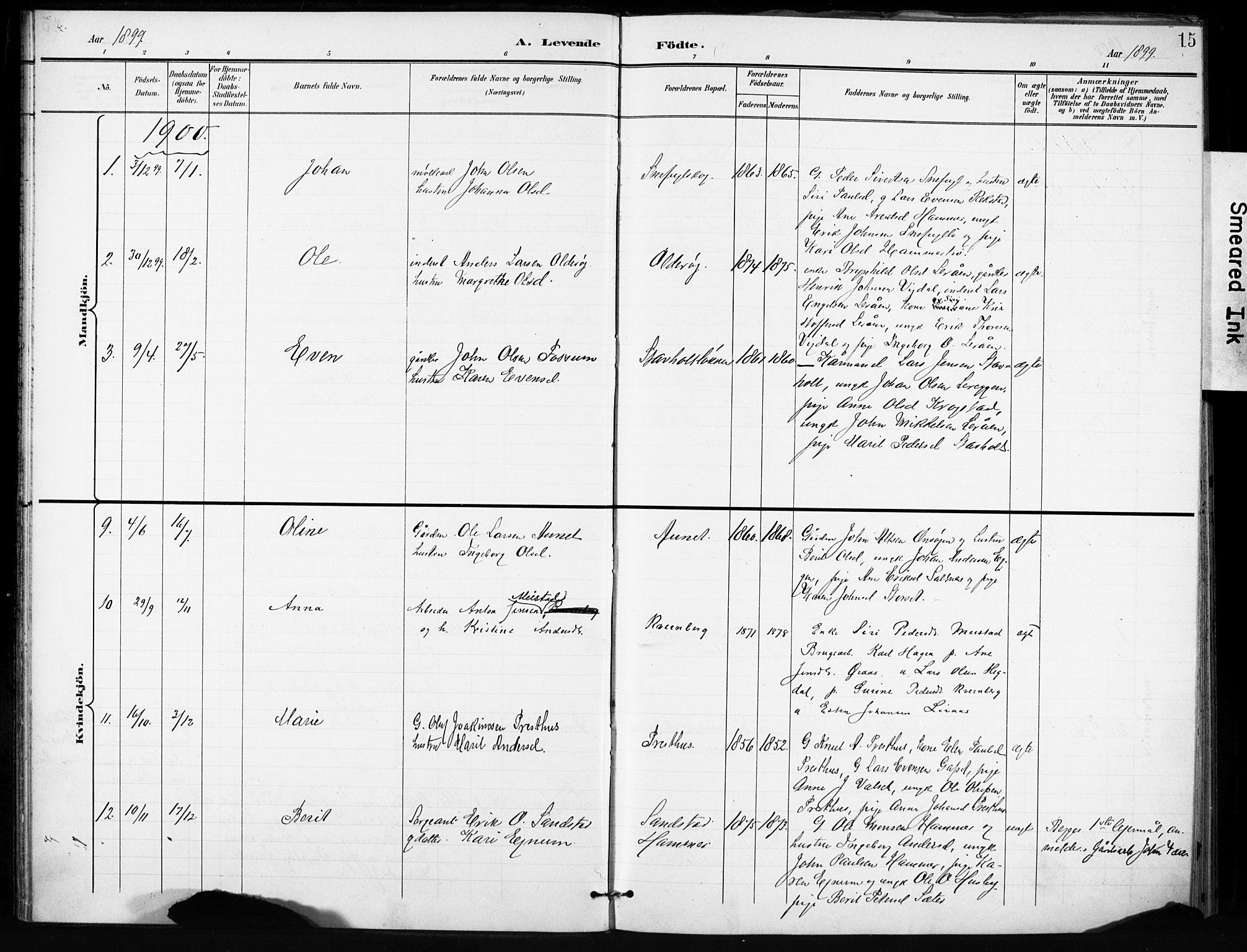 SAT, Ministerialprotokoller, klokkerbøker og fødselsregistre - Sør-Trøndelag, 666/L0787: Ministerialbok nr. 666A05, 1895-1908, s. 15