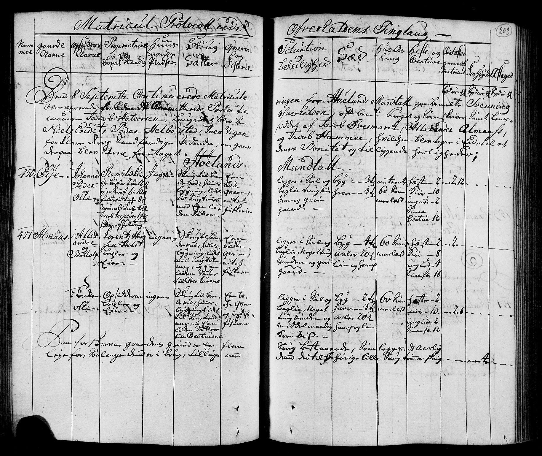 RA, Rentekammeret inntil 1814, Realistisk ordnet avdeling, N/Nb/Nbf/L0168: Namdalen eksaminasjonsprotokoll, 1723, s. 202b-203a