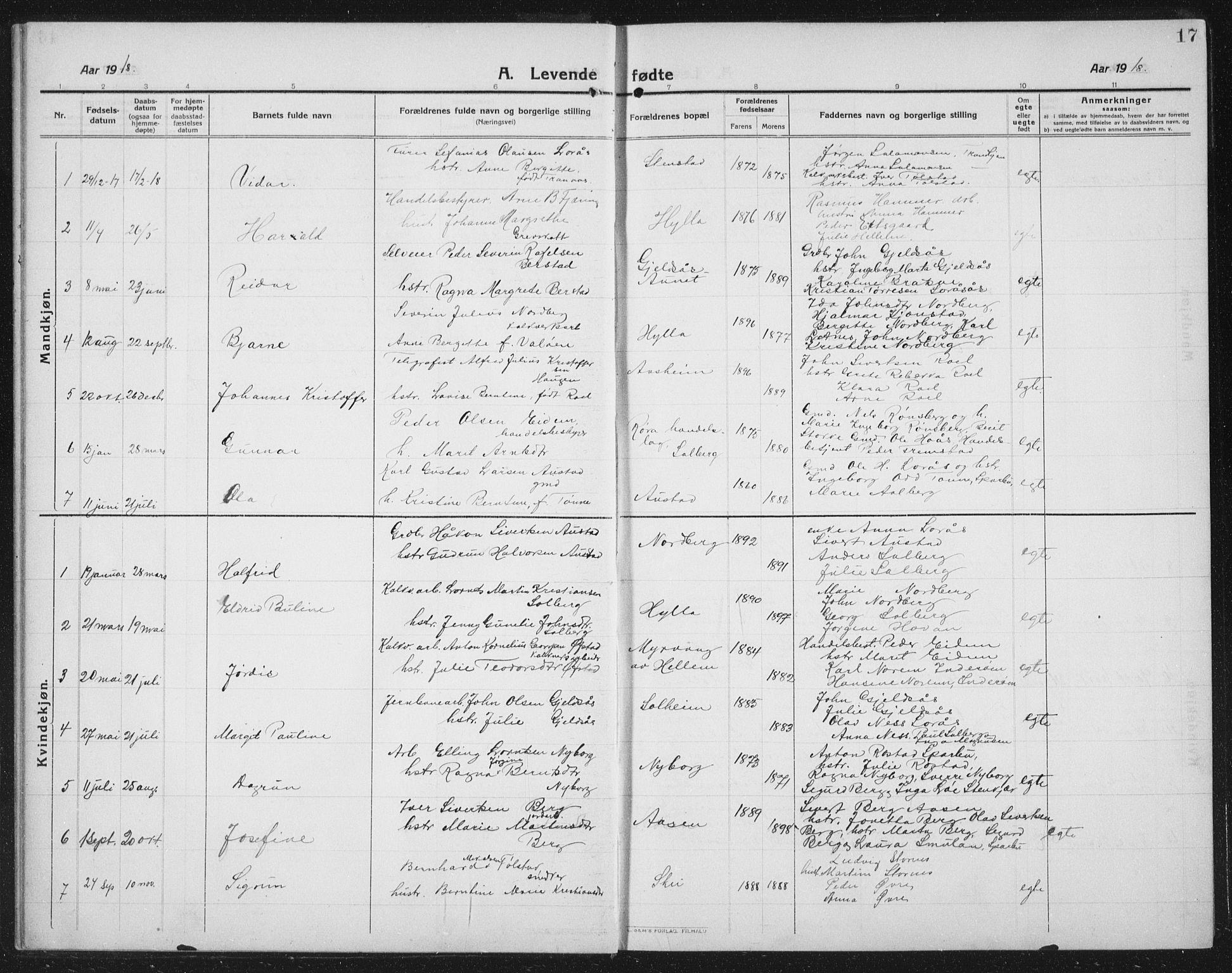 SAT, Ministerialprotokoller, klokkerbøker og fødselsregistre - Nord-Trøndelag, 731/L0312: Klokkerbok nr. 731C03, 1911-1935, s. 17