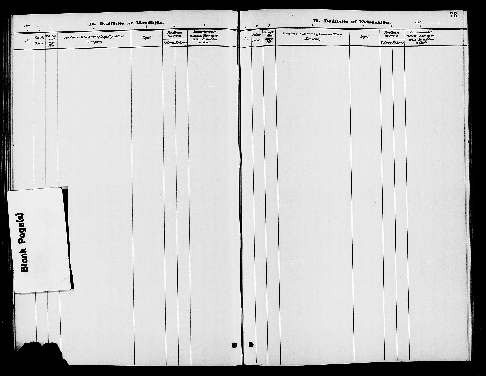 SAH, Vardal prestekontor, H/Ha/Hab/L0009: Klokkerbok nr. 9, 1894-1902, s. 73