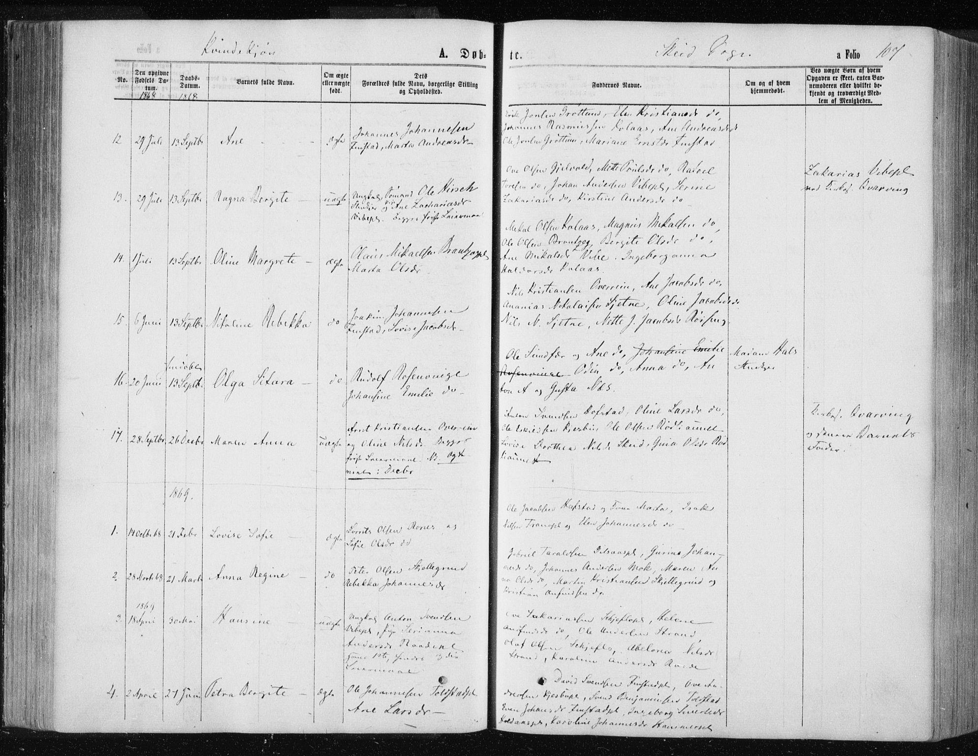 SAT, Ministerialprotokoller, klokkerbøker og fødselsregistre - Nord-Trøndelag, 735/L0345: Ministerialbok nr. 735A08 /2, 1863-1872, s. 107