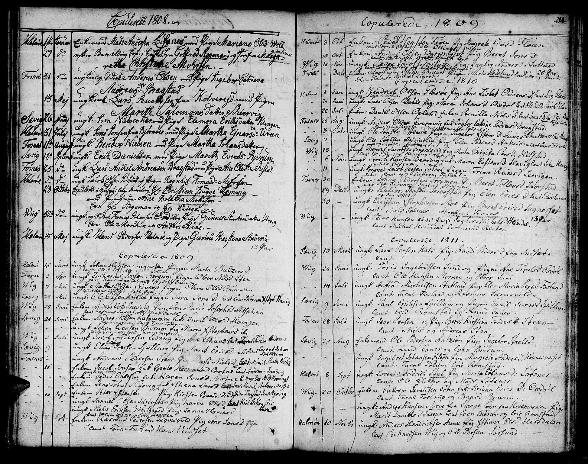 SAT, Ministerialprotokoller, klokkerbøker og fødselsregistre - Nord-Trøndelag, 773/L0608: Ministerialbok nr. 773A02, 1784-1816, s. 214
