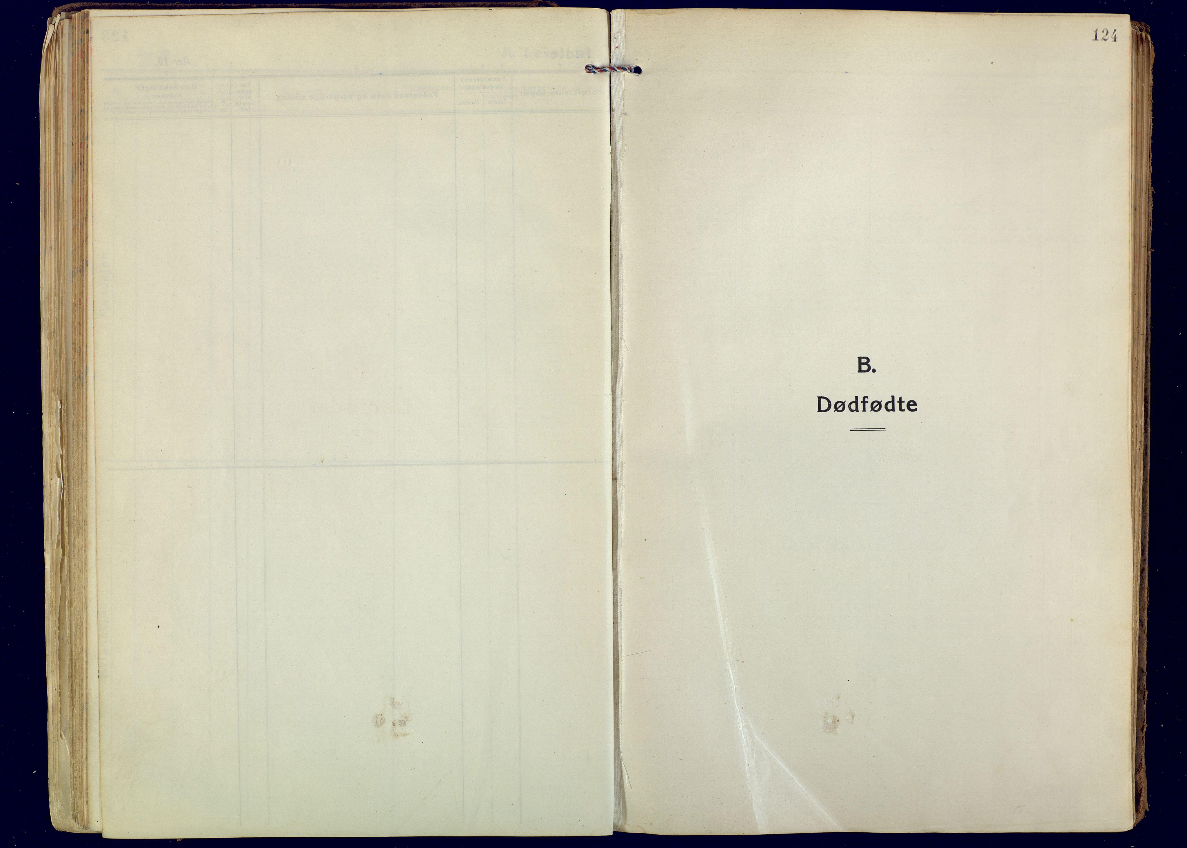 SATØ, Målselv sokneprestembete, Ministerialbok nr. 14, 1919-1932, s. 124