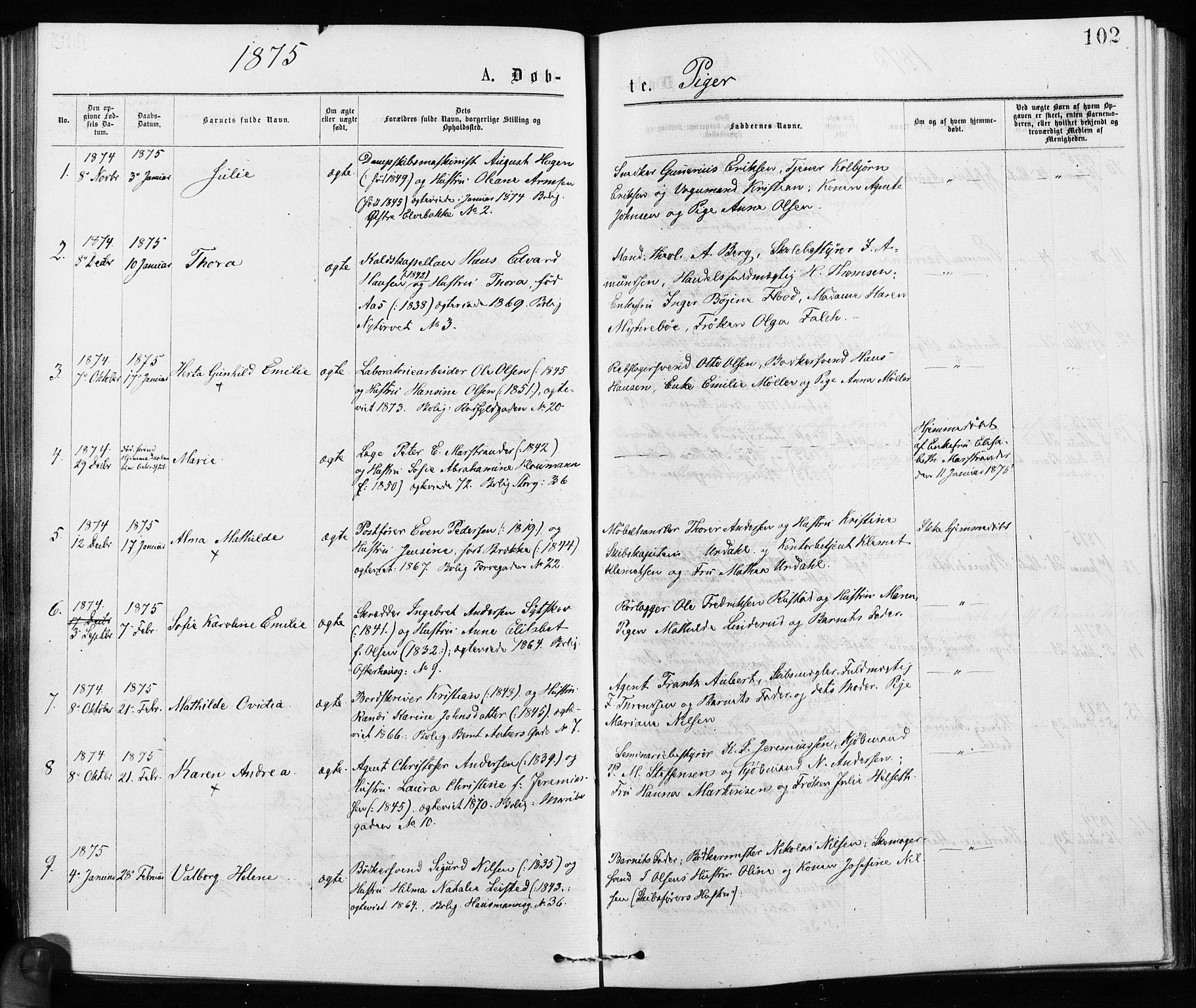 SAO, Jakob prestekontor Kirkebøker, F/Fa/L0001: Ministerialbok nr. 1, 1875-1924, s. 102