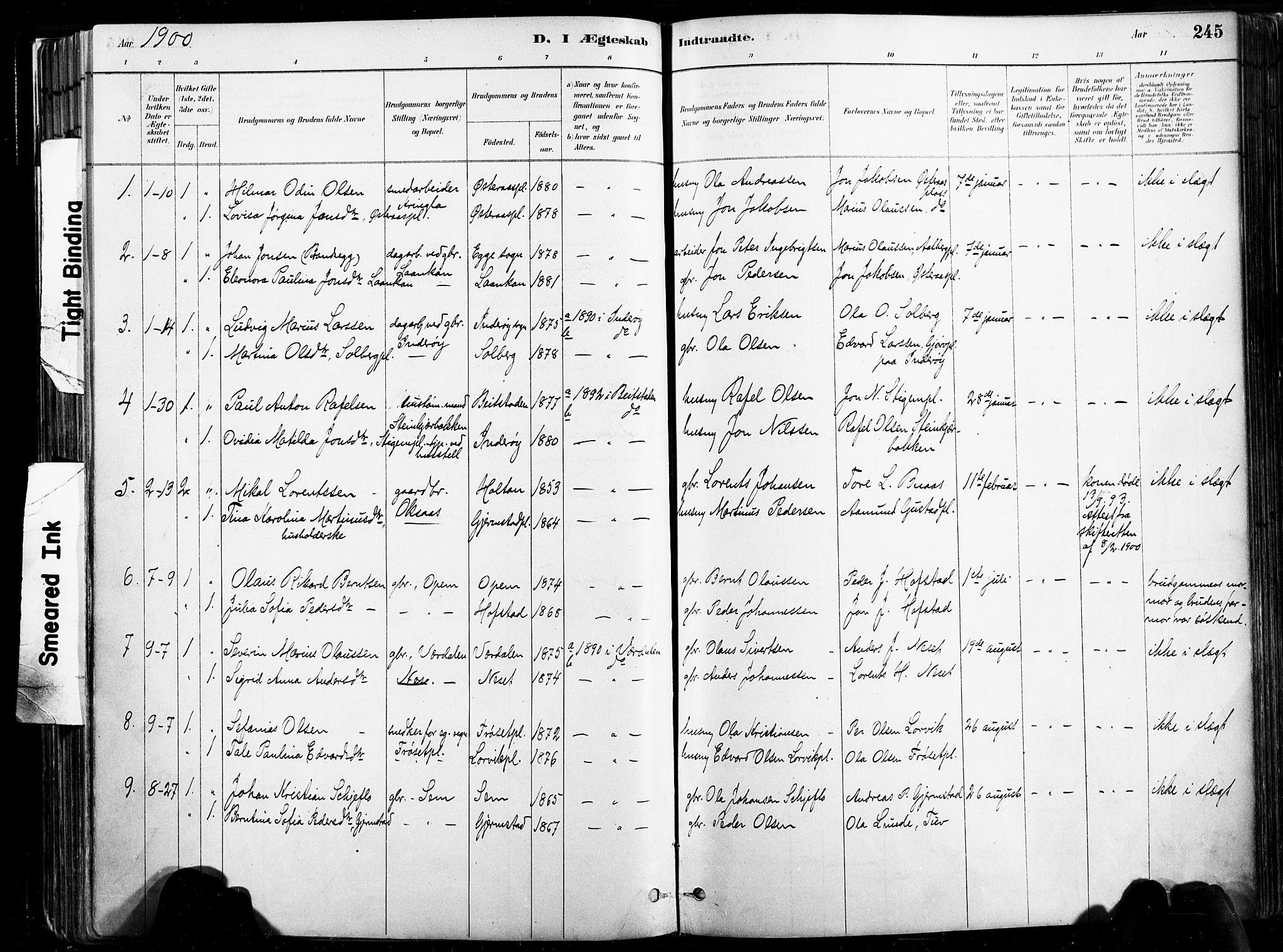 SAT, Ministerialprotokoller, klokkerbøker og fødselsregistre - Nord-Trøndelag, 735/L0351: Ministerialbok nr. 735A10, 1884-1908, s. 245