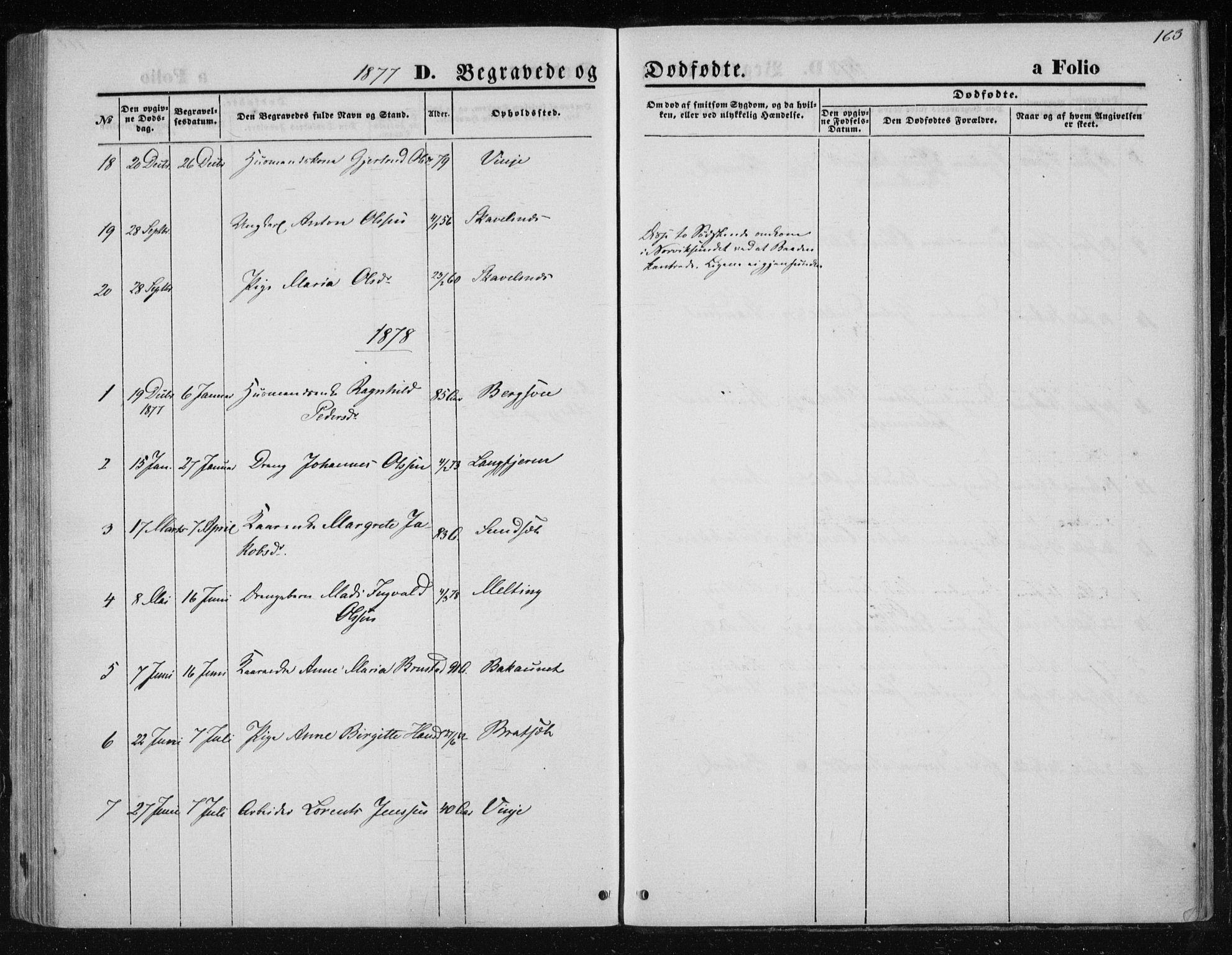 SAT, Ministerialprotokoller, klokkerbøker og fødselsregistre - Nord-Trøndelag, 733/L0324: Ministerialbok nr. 733A03, 1870-1883, s. 163