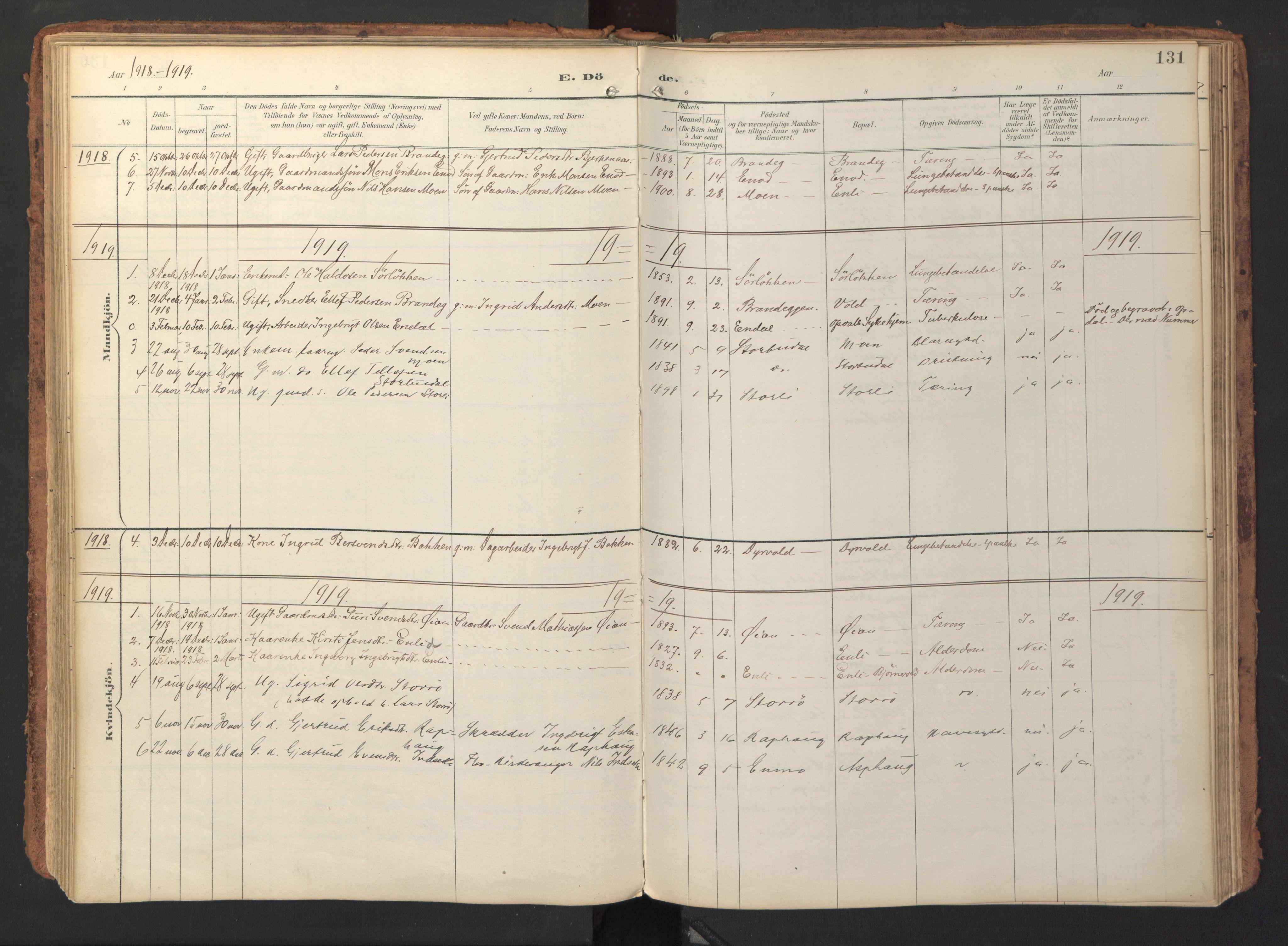 SAT, Ministerialprotokoller, klokkerbøker og fødselsregistre - Sør-Trøndelag, 690/L1050: Ministerialbok nr. 690A01, 1889-1929, s. 131