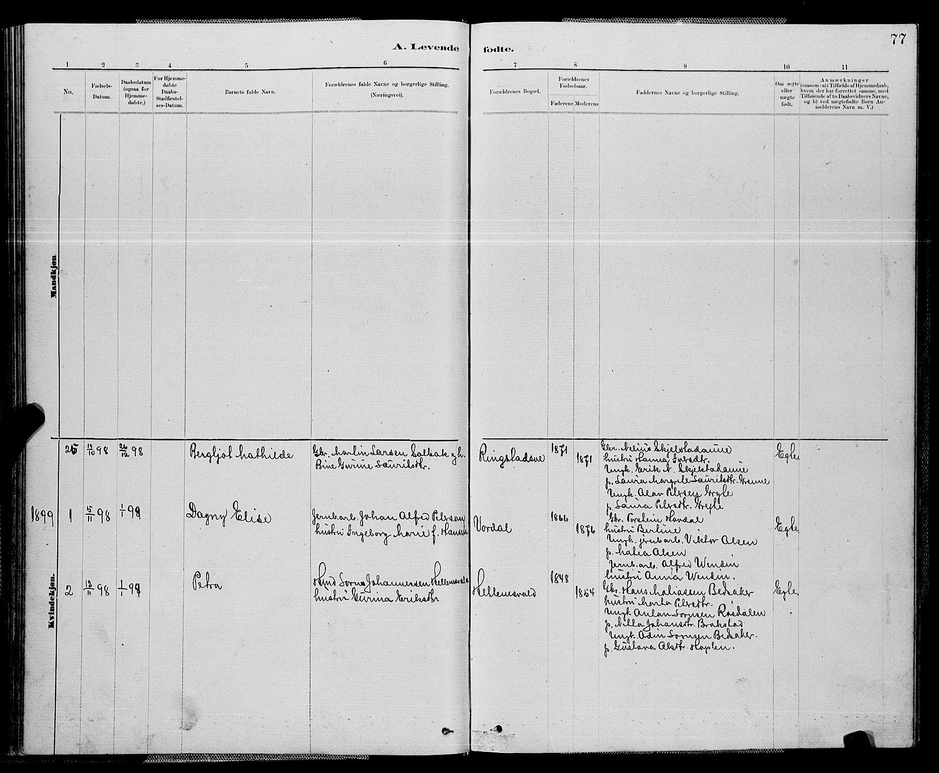 SAT, Ministerialprotokoller, klokkerbøker og fødselsregistre - Nord-Trøndelag, 714/L0134: Klokkerbok nr. 714C03, 1878-1898, s. 77