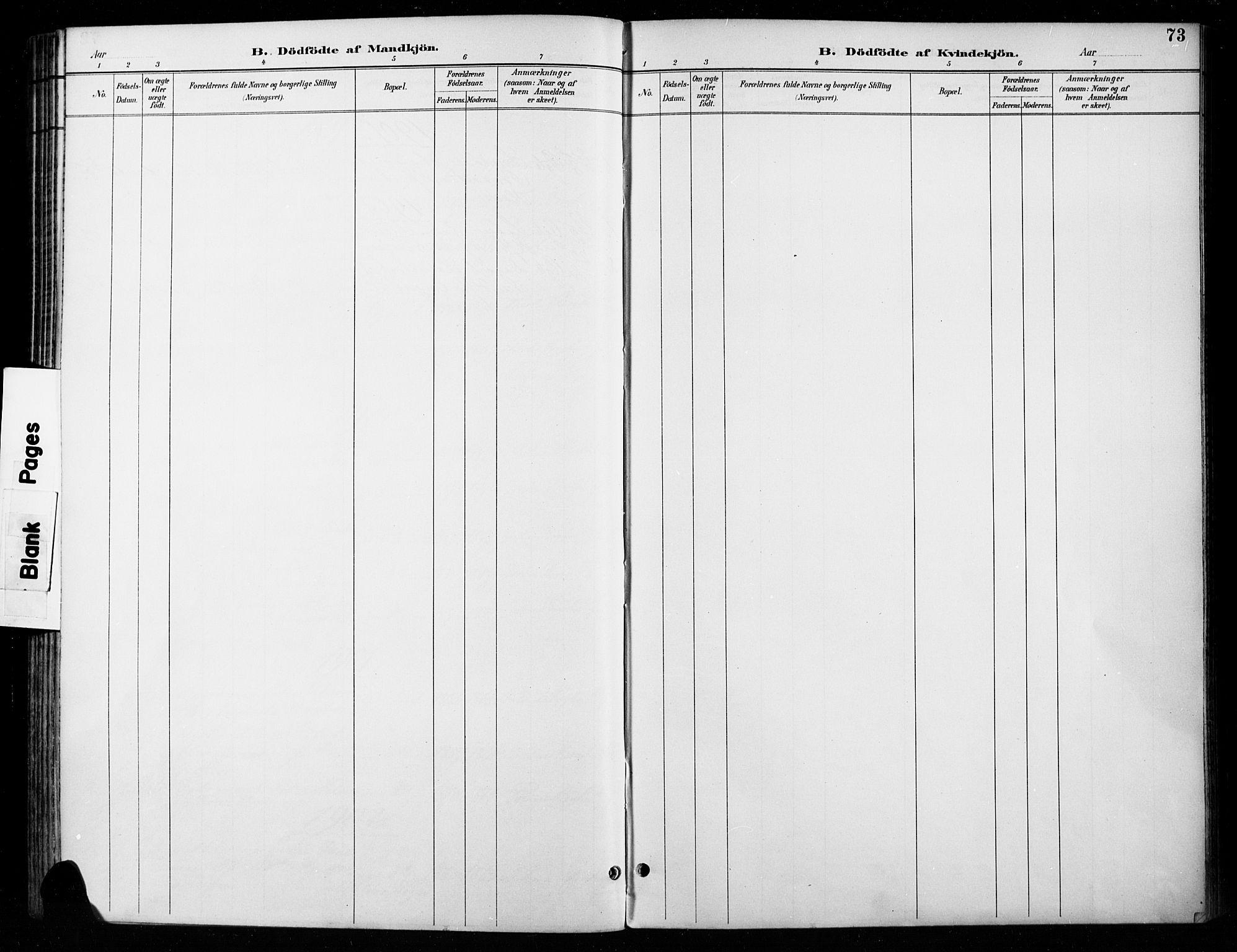 SAH, Vardal prestekontor, H/Ha/Haa/L0011: Ministerialbok nr. 11, 1891-1901, s. 73