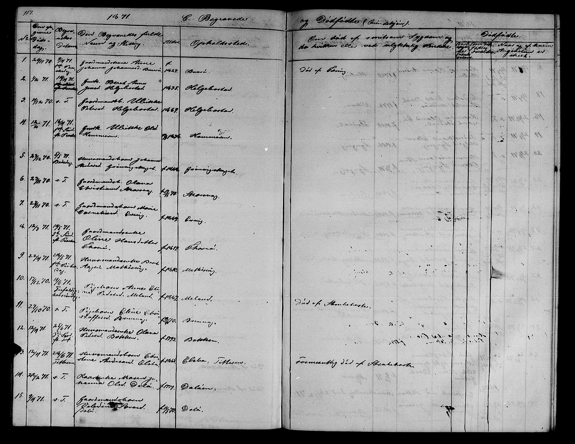 SAT, Ministerialprotokoller, klokkerbøker og fødselsregistre - Sør-Trøndelag, 634/L0539: Klokkerbok nr. 634C01, 1866-1873, s. 117