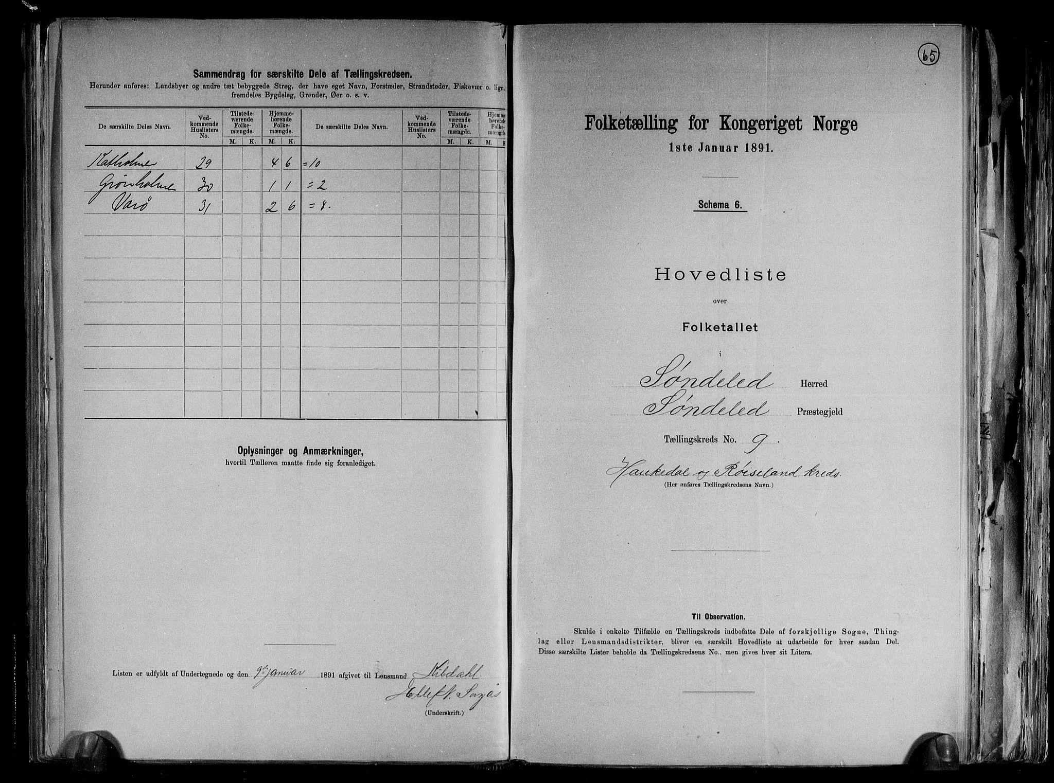 RA, Folketelling 1891 for 0913 Søndeled herred, 1891, s. 21