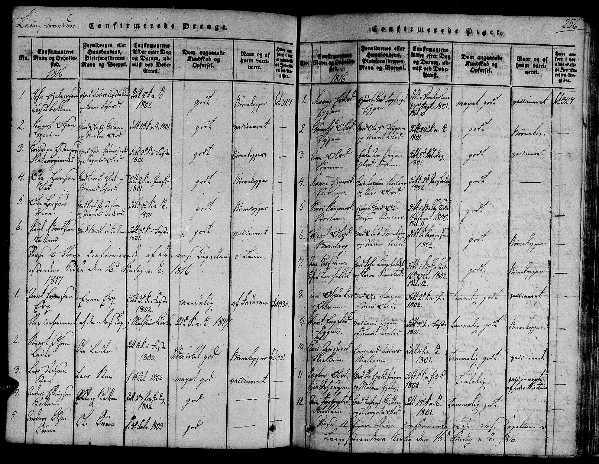 SAT, Ministerialprotokoller, klokkerbøker og fødselsregistre - Sør-Trøndelag, 691/L1067: Ministerialbok nr. 691A03 /3, 1816-1826, s. 256