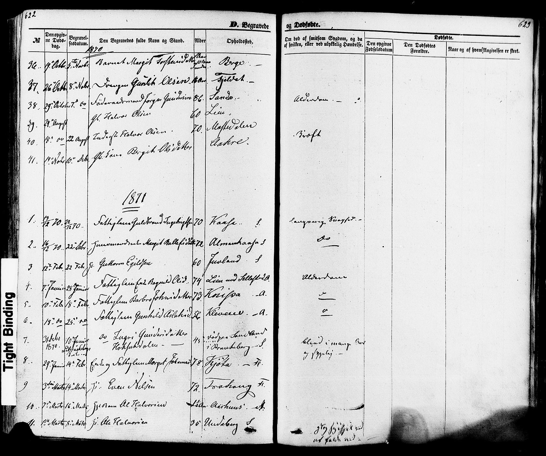 SAKO, Seljord kirkebøker, F/Fa/L0013: Ministerialbok nr. I 13, 1866-1876, s. 622-623