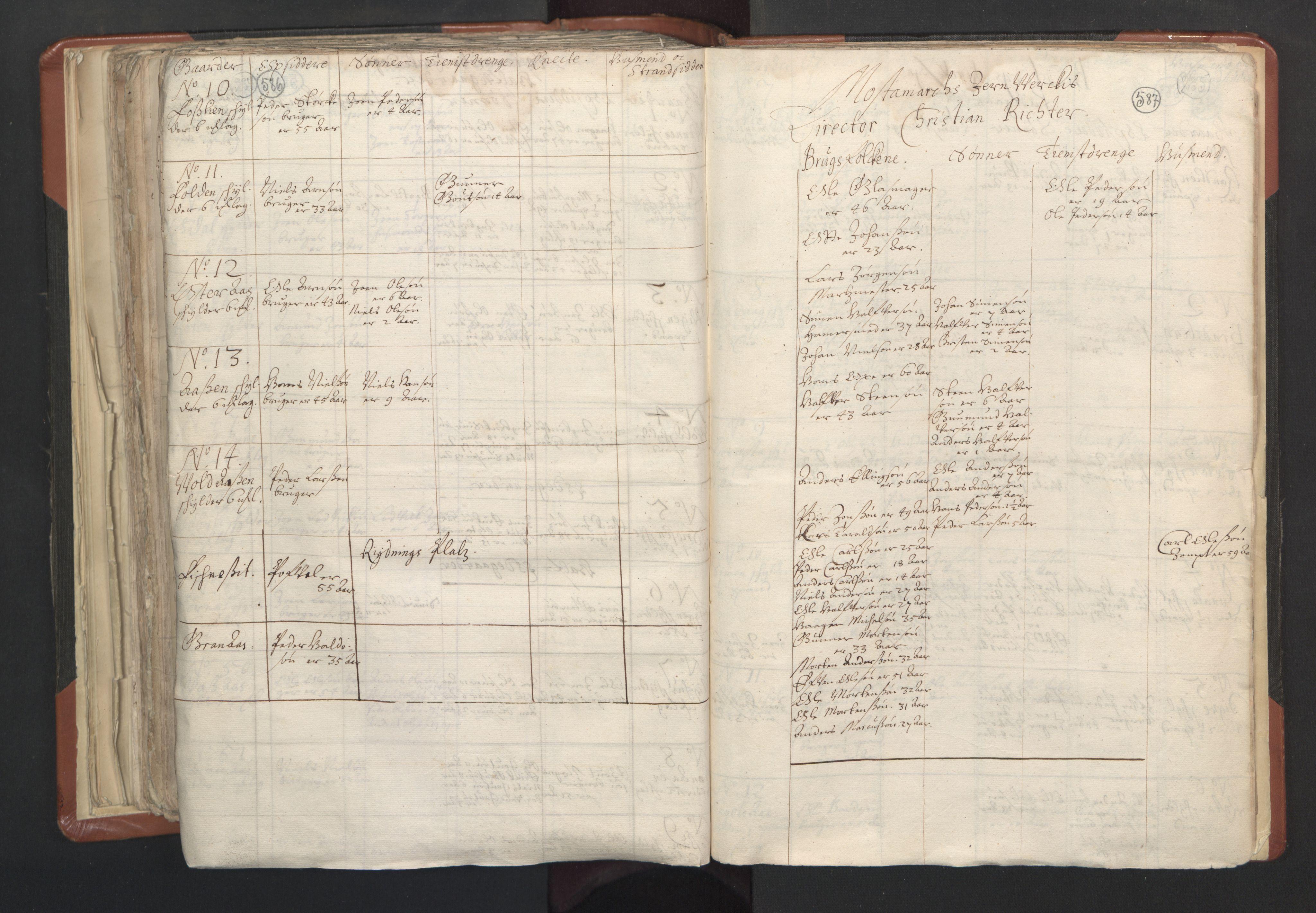 RA, Sogneprestenes manntall 1664-1666, nr. 31: Dalane prosti, 1664-1666, s. 586-587