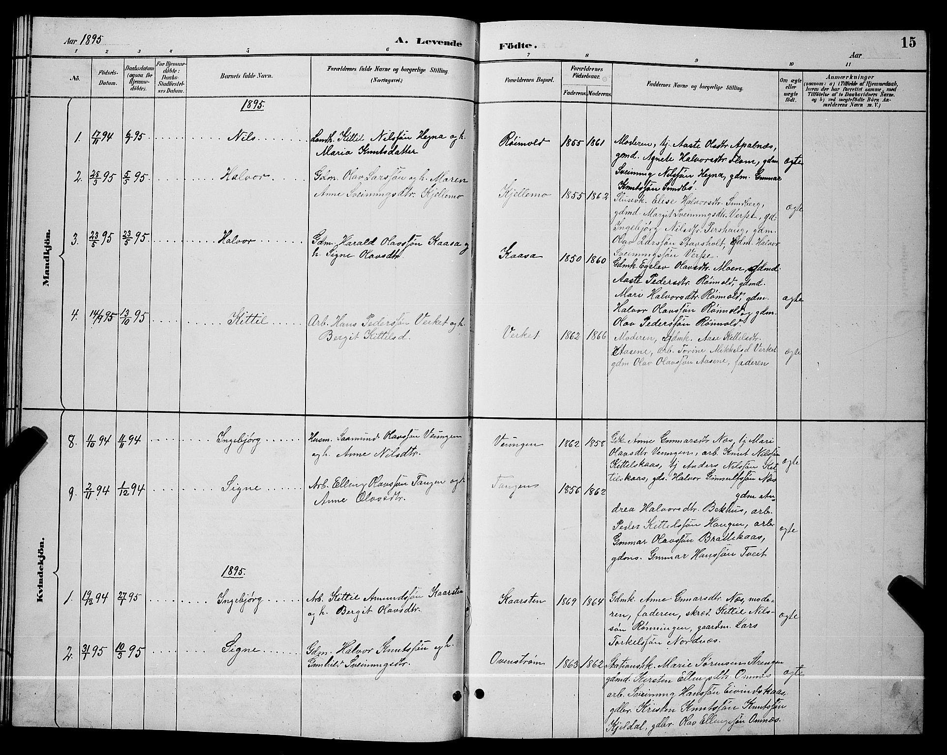 SAKO, Lunde kirkebøker, G/Gb/L0002: Klokkerbok nr. II 2, 1888-1895, s. 15