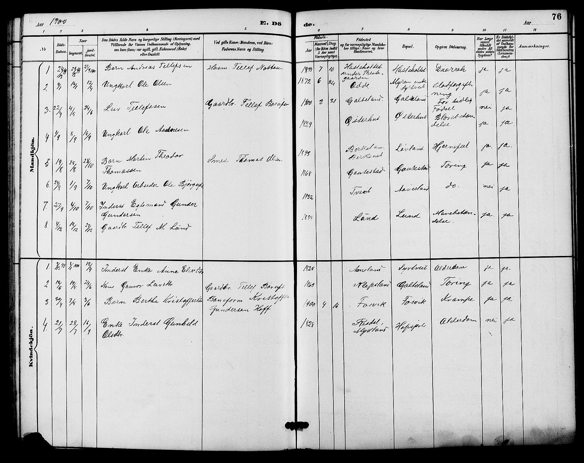 SAK, Evje sokneprestkontor, F/Fb/Fba/L0003: Klokkerbok nr. B 3, 1888-1903, s. 76