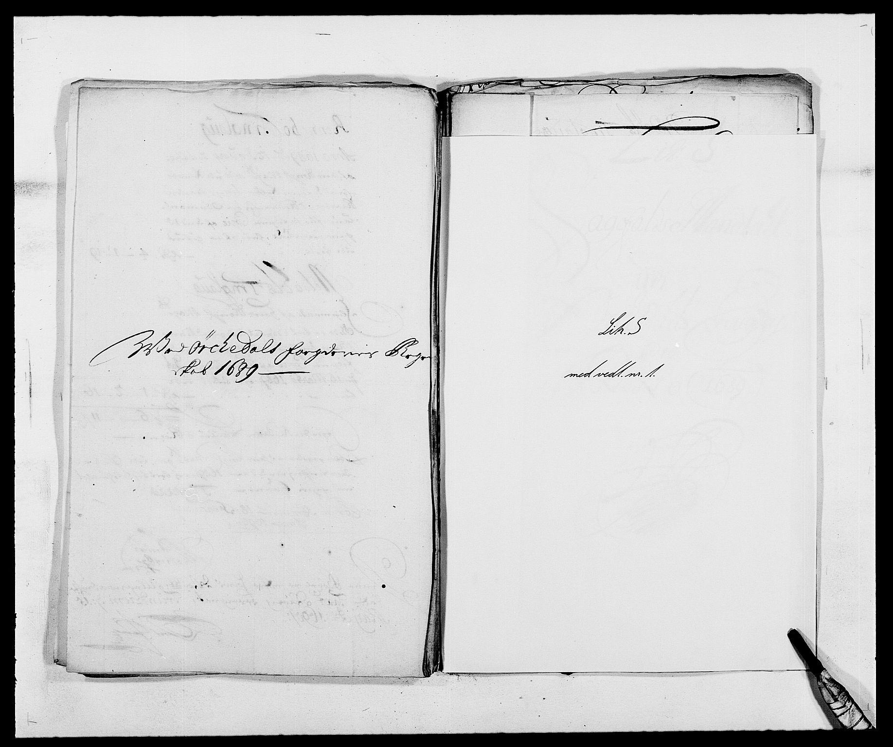 RA, Rentekammeret inntil 1814, Reviderte regnskaper, Fogderegnskap, R58/L3936: Fogderegnskap Orkdal, 1689-1690, s. 171