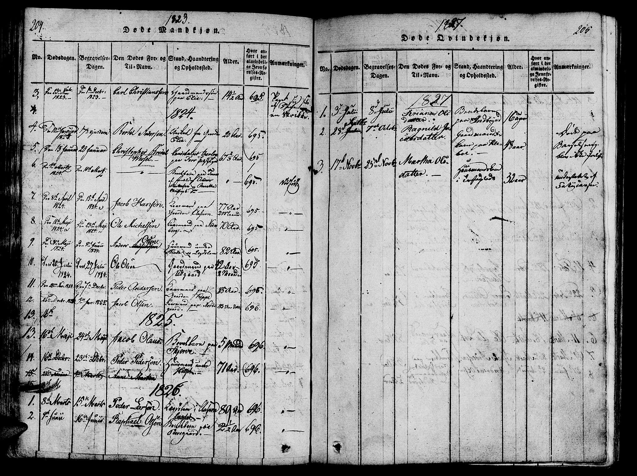 SAT, Ministerialprotokoller, klokkerbøker og fødselsregistre - Nord-Trøndelag, 746/L0441: Ministerialbok nr. 746A03 /1, 1816-1827, s. 204-205
