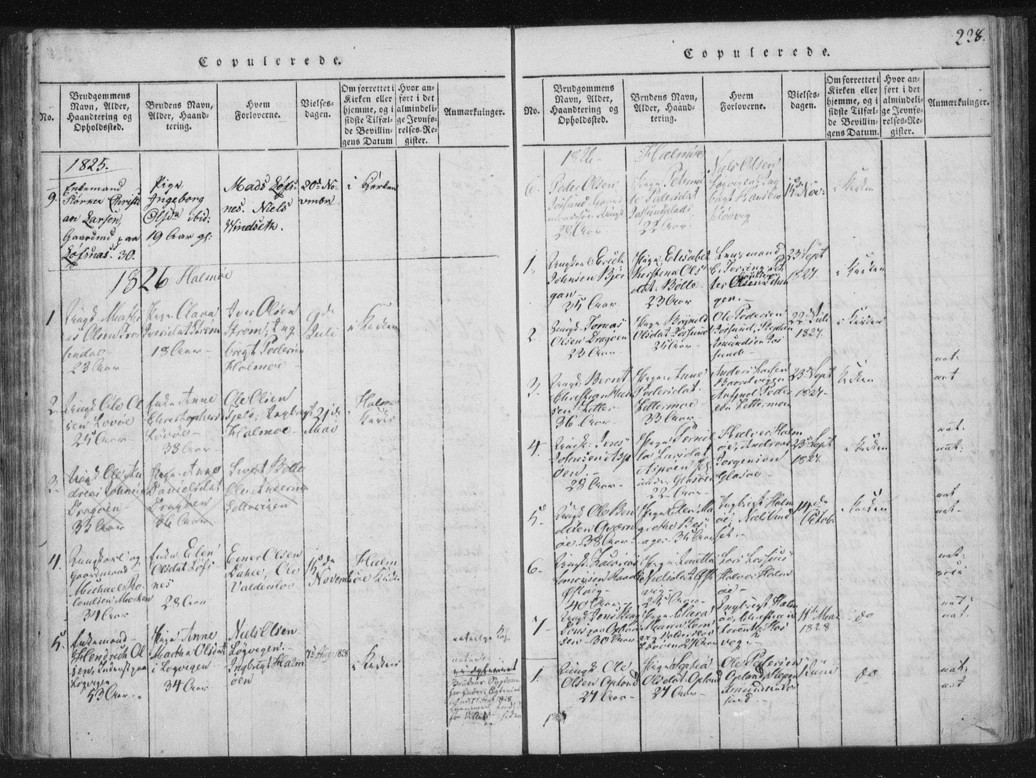 SAT, Ministerialprotokoller, klokkerbøker og fødselsregistre - Nord-Trøndelag, 773/L0609: Ministerialbok nr. 773A03 /3, 1815-1830, s. 228