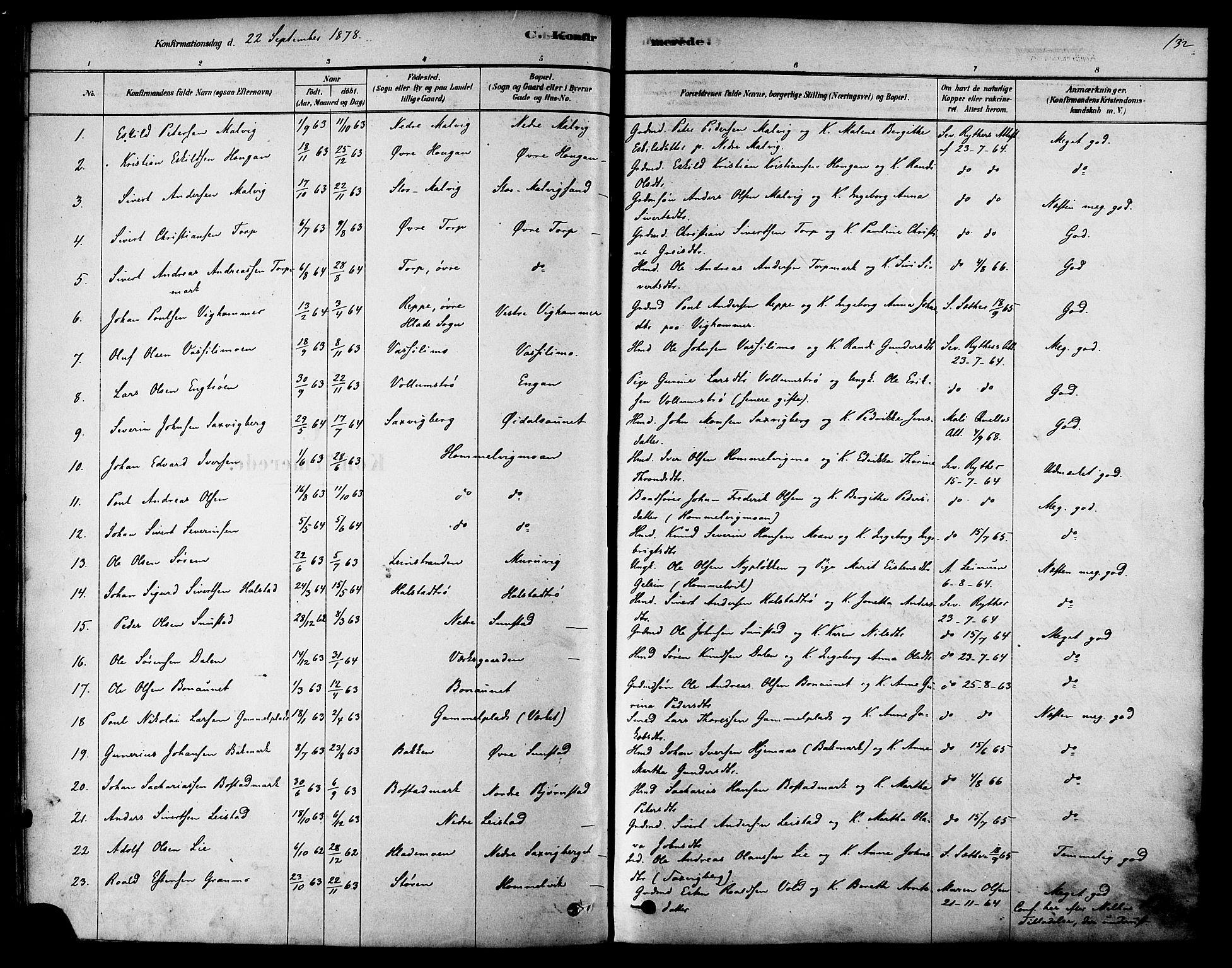 SAT, Ministerialprotokoller, klokkerbøker og fødselsregistre - Sør-Trøndelag, 616/L0410: Ministerialbok nr. 616A07, 1878-1893, s. 132
