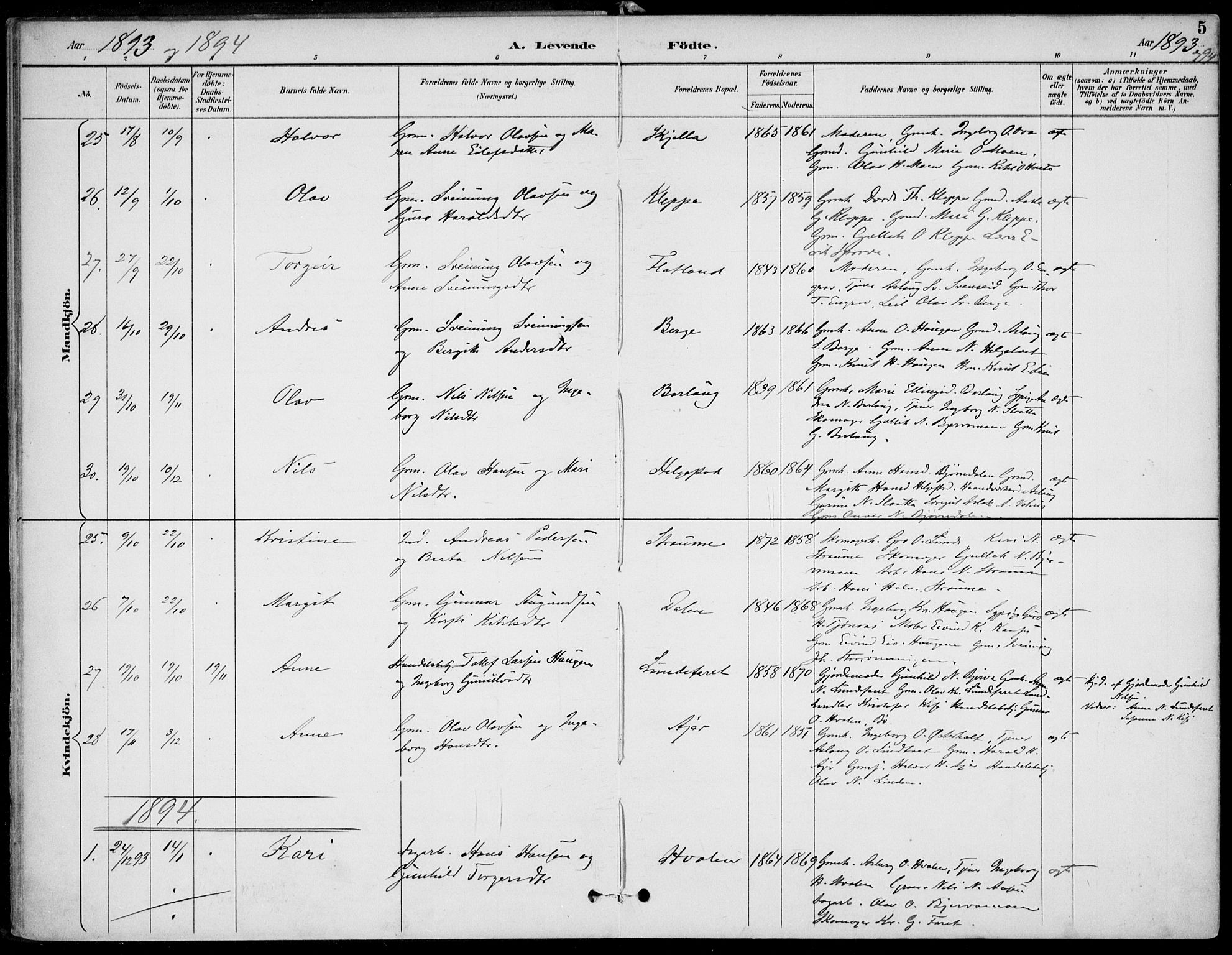 SAKO, Lunde kirkebøker, F/Fa/L0003: Ministerialbok nr. I 3, 1893-1902, s. 5