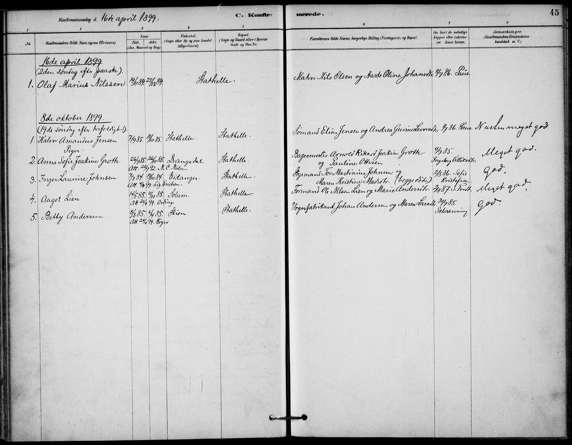 SAKO, Bamble kirkebøker, G/Gb/L0001: Klokkerbok nr. II 1, 1878-1900, s. 45
