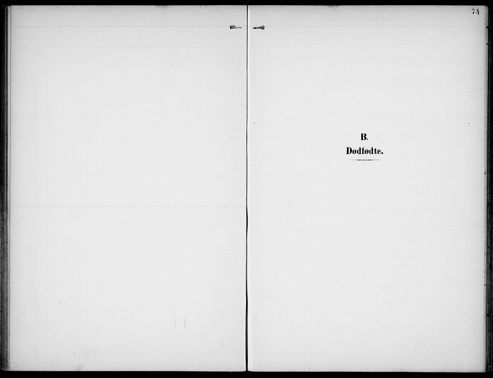 SAKO, Lunde kirkebøker, F/Fa/L0004: Ministerialbok nr. I 4, 1902-1913, s. 74
