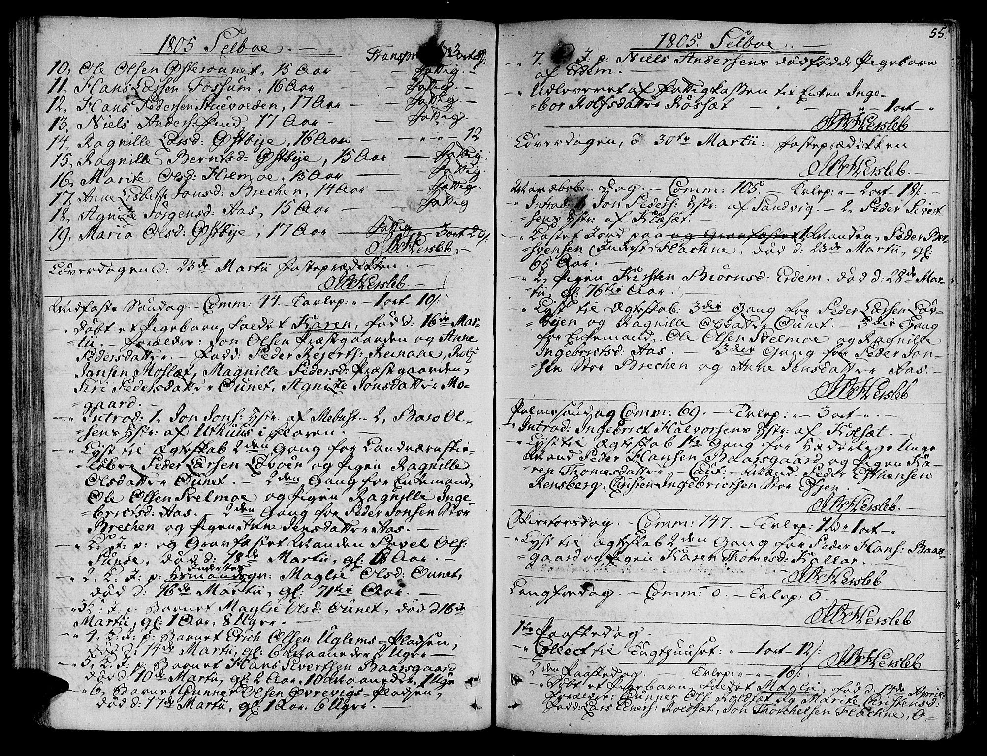 SAT, Ministerialprotokoller, klokkerbøker og fødselsregistre - Sør-Trøndelag, 695/L1140: Ministerialbok nr. 695A03, 1801-1815, s. 55