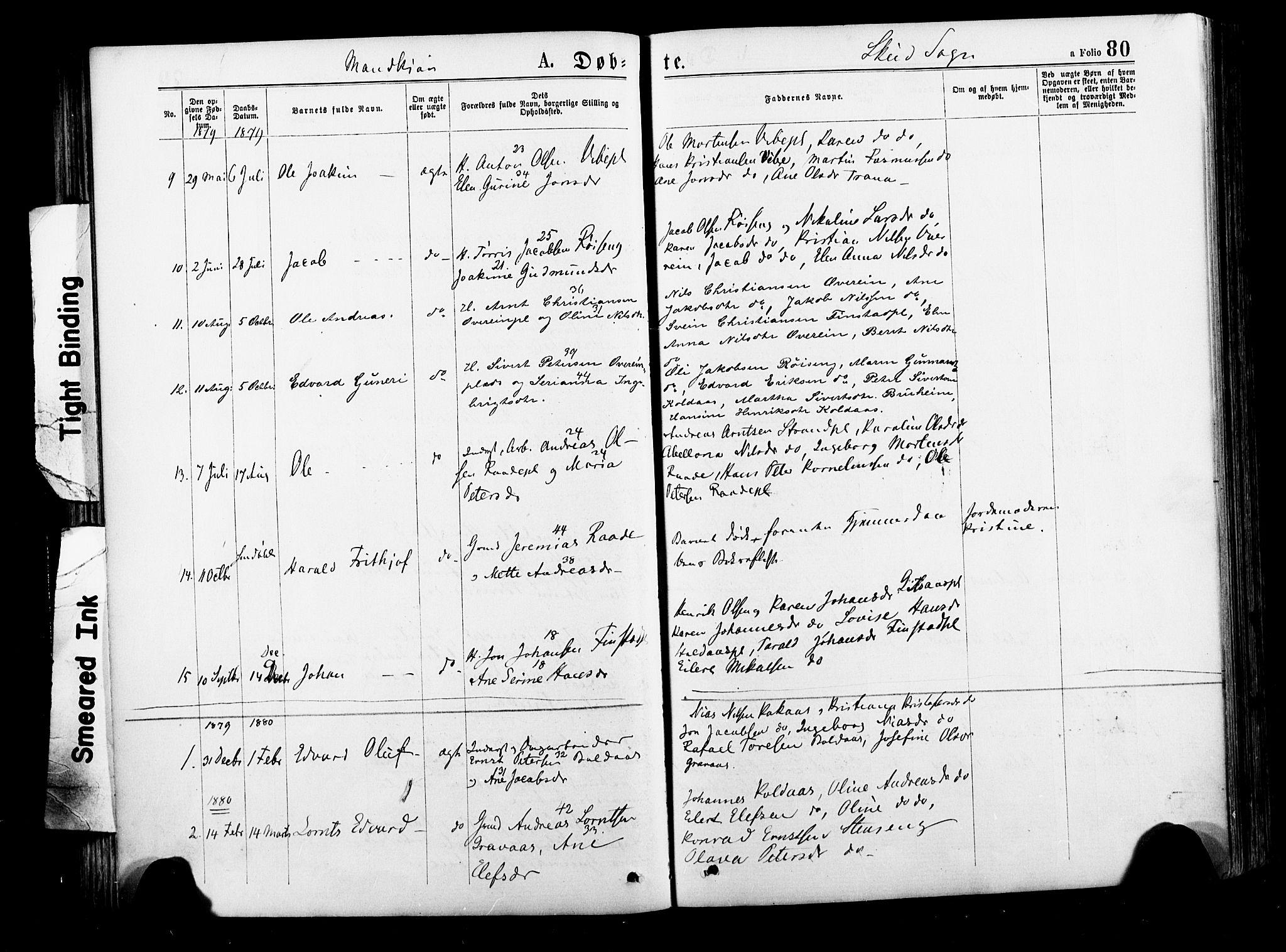 SAT, Ministerialprotokoller, klokkerbøker og fødselsregistre - Nord-Trøndelag, 735/L0348: Ministerialbok nr. 735A09 /2, 1873-1883, s. 80