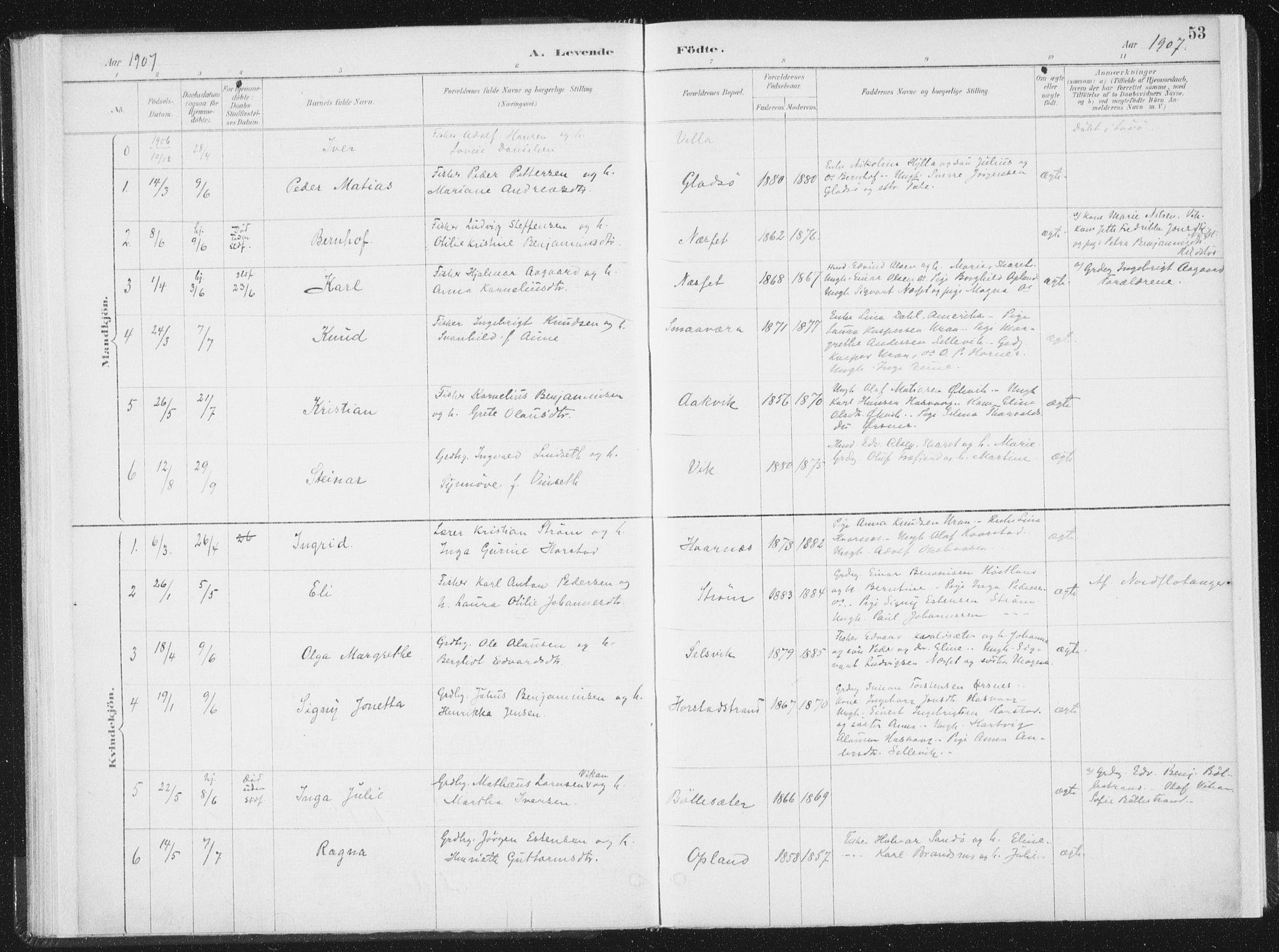 SAT, Ministerialprotokoller, klokkerbøker og fødselsregistre - Nord-Trøndelag, 771/L0597: Ministerialbok nr. 771A04, 1885-1910, s. 53