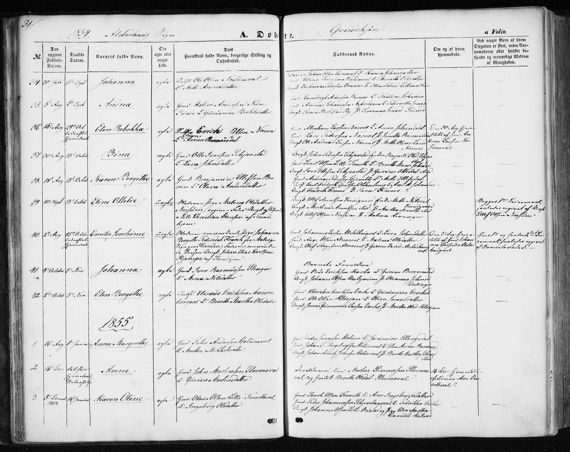 SAT, Ministerialprotokoller, klokkerbøker og fødselsregistre - Nord-Trøndelag, 717/L0154: Ministerialbok nr. 717A07 /1, 1850-1862, s. 31