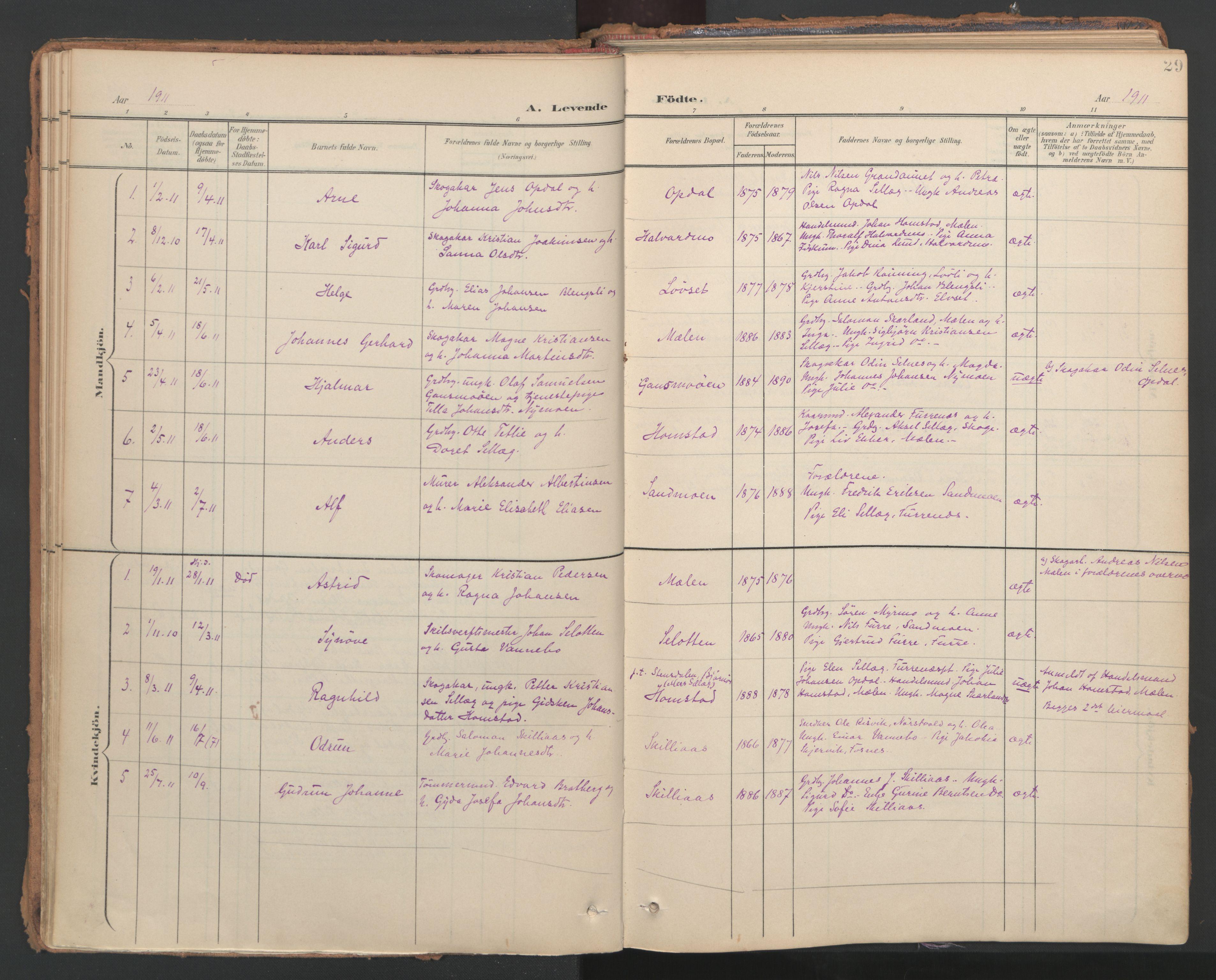 SAT, Ministerialprotokoller, klokkerbøker og fødselsregistre - Nord-Trøndelag, 766/L0564: Ministerialbok nr. 767A02, 1900-1932, s. 29