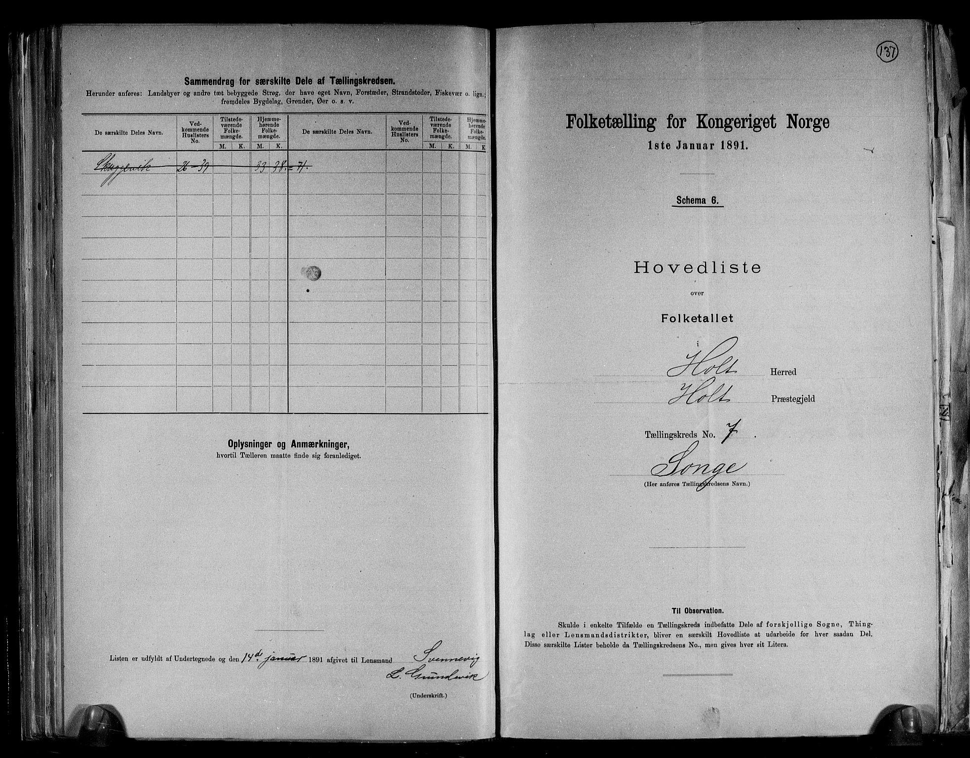 RA, Folketelling 1891 for 0914 Holt herred, 1891, s. 19