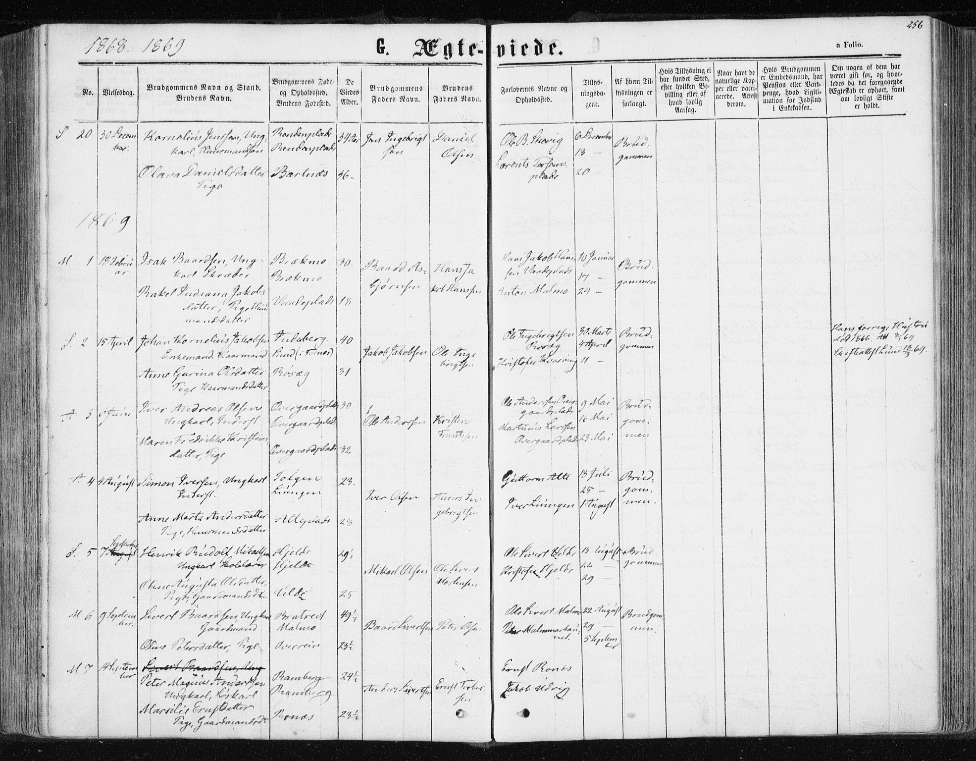 SAT, Ministerialprotokoller, klokkerbøker og fødselsregistre - Nord-Trøndelag, 741/L0394: Ministerialbok nr. 741A08, 1864-1877, s. 256