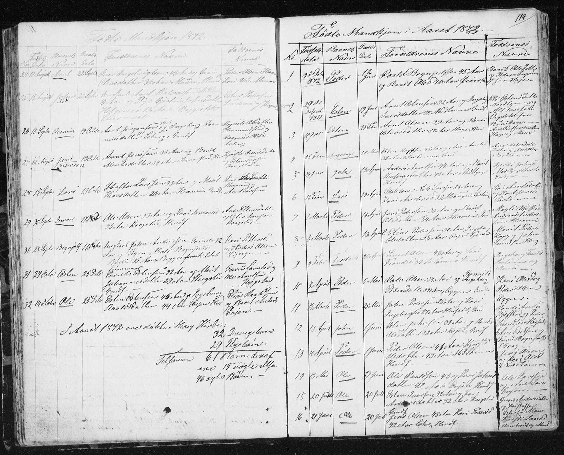 SAT, Ministerialprotokoller, klokkerbøker og fødselsregistre - Sør-Trøndelag, 692/L1110: Klokkerbok nr. 692C05, 1849-1889, s. 114