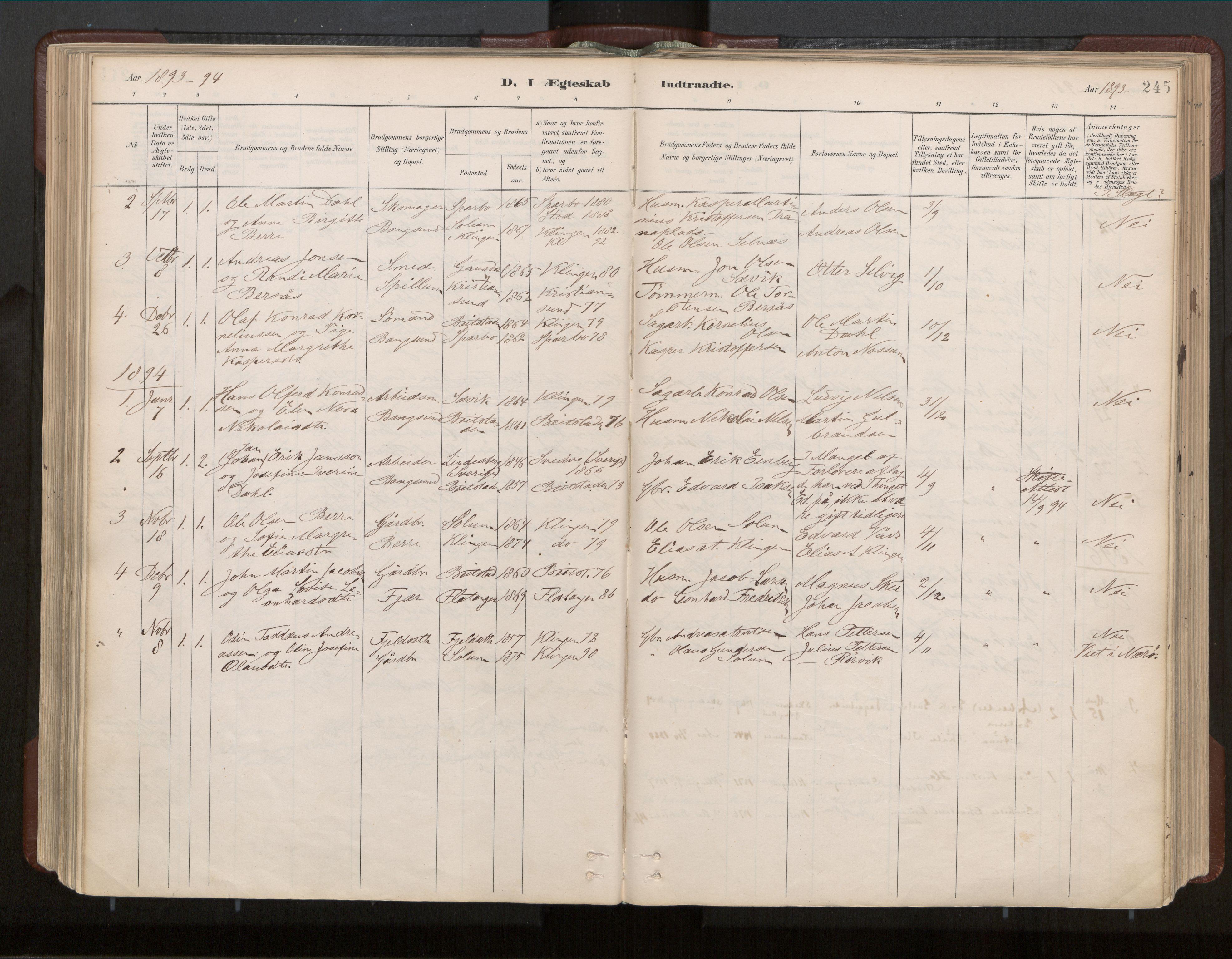 SAT, Ministerialprotokoller, klokkerbøker og fødselsregistre - Nord-Trøndelag, 770/L0589: Ministerialbok nr. 770A03, 1887-1929, s. 245