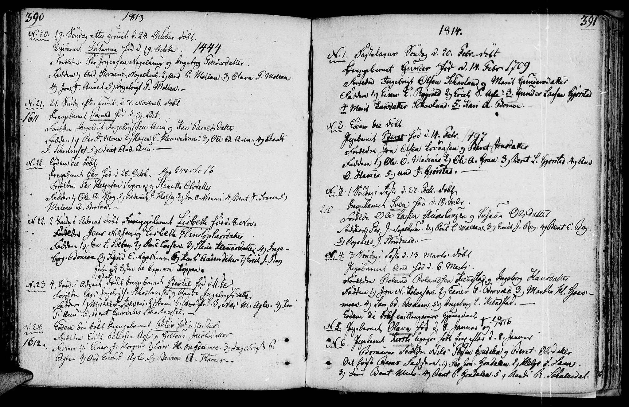 SAT, Ministerialprotokoller, klokkerbøker og fødselsregistre - Nord-Trøndelag, 749/L0468: Ministerialbok nr. 749A02, 1787-1817, s. 390-391