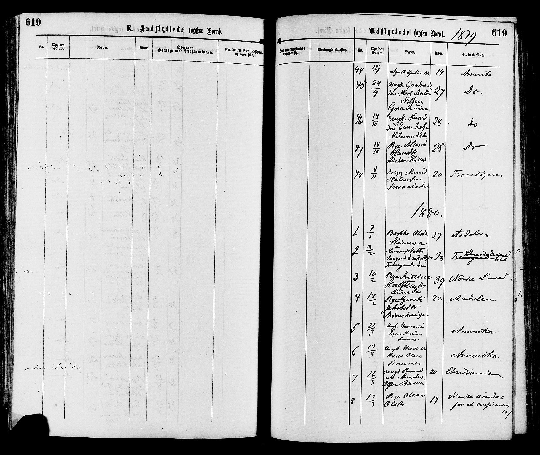 SAH, Sør-Aurdal prestekontor, Ministerialbok nr. 8, 1877-1885, s. 619