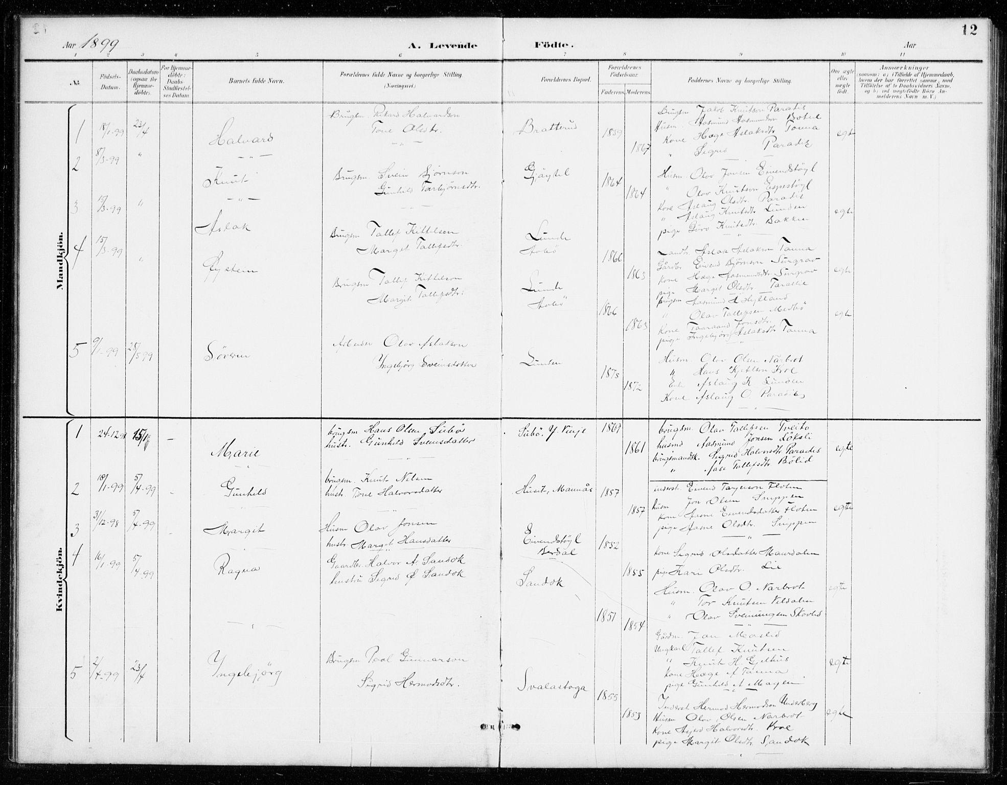 SAKO, Vinje kirkebøker, G/Gb/L0003: Klokkerbok nr. II 3, 1892-1943, s. 12
