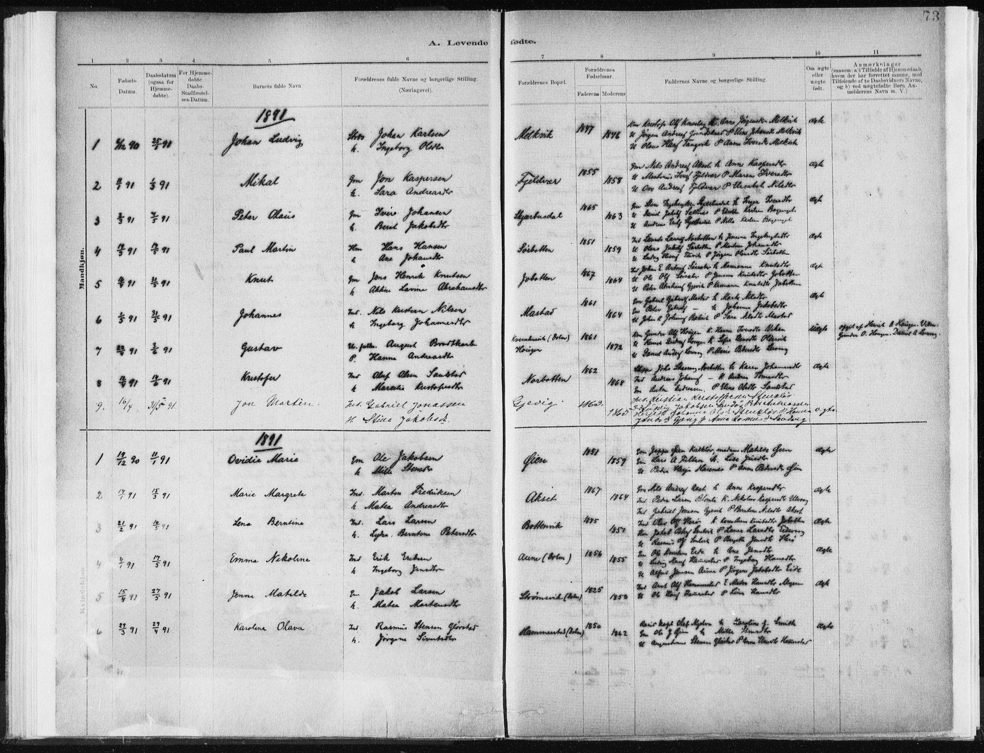 SAT, Ministerialprotokoller, klokkerbøker og fødselsregistre - Sør-Trøndelag, 637/L0558: Ministerialbok nr. 637A01, 1882-1899, s. 73