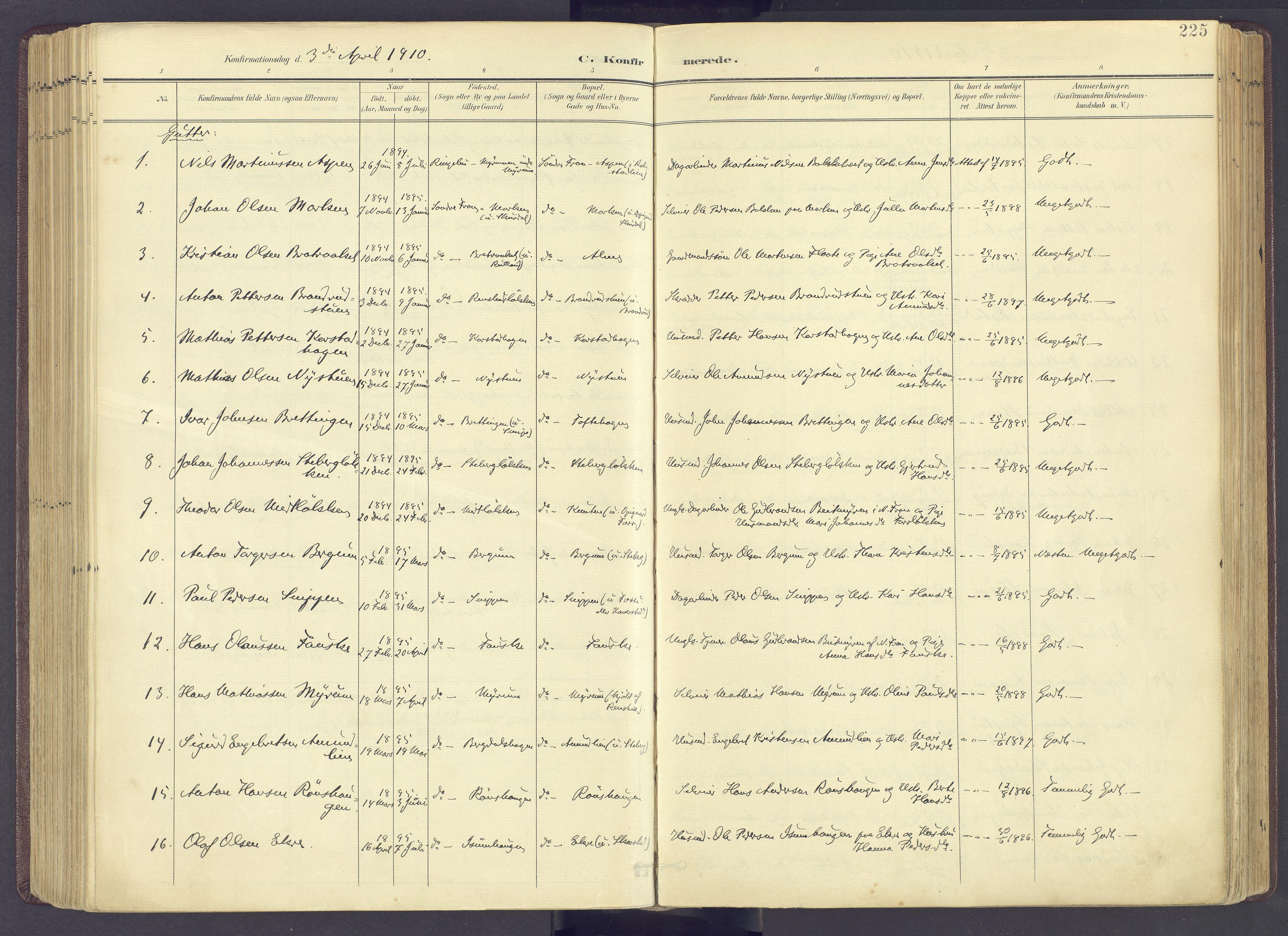 SAH, Sør-Fron prestekontor, H/Ha/Haa/L0004: Ministerialbok nr. 4, 1898-1919, s. 225