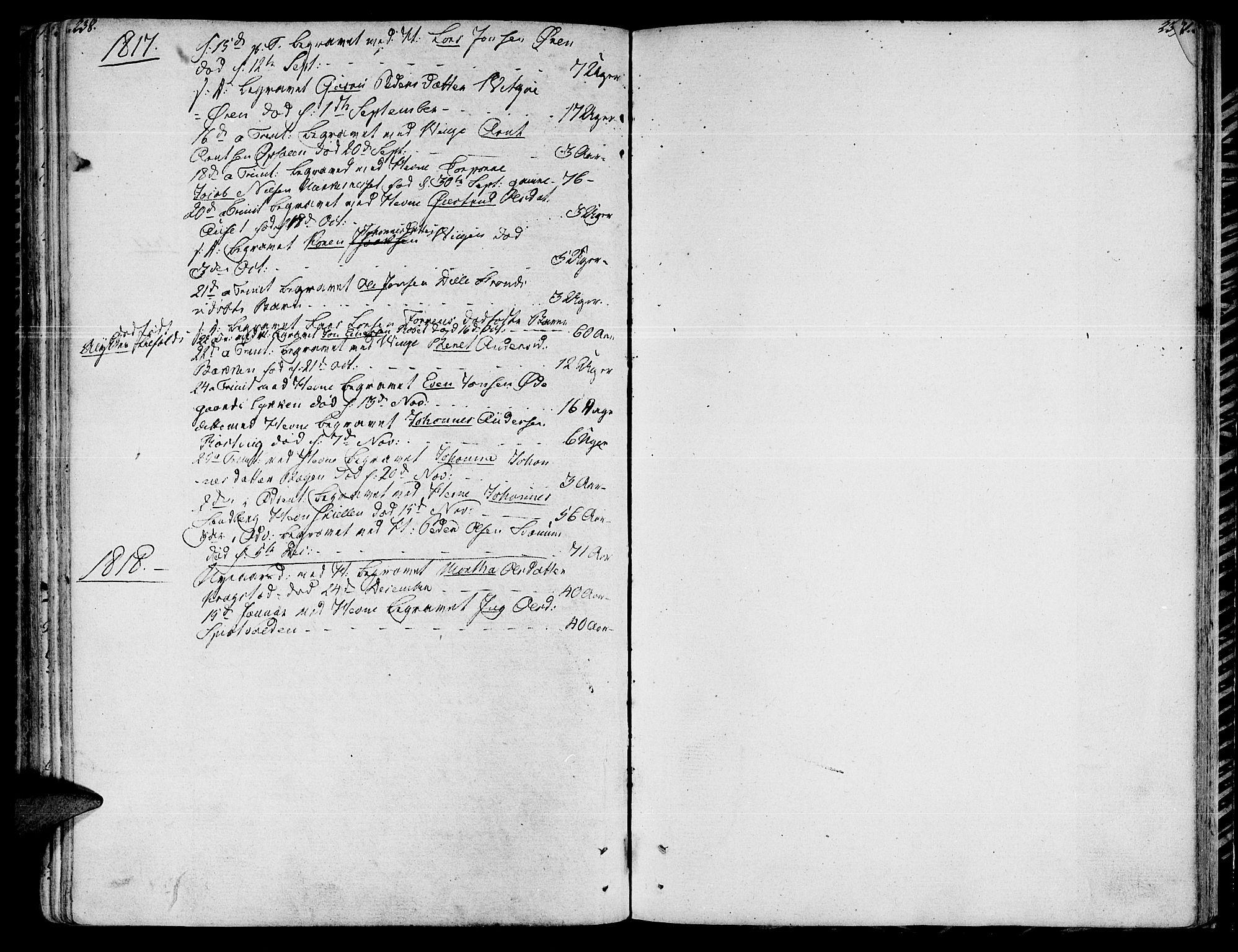 SAT, Ministerialprotokoller, klokkerbøker og fødselsregistre - Sør-Trøndelag, 630/L0490: Ministerialbok nr. 630A03, 1795-1818, s. 238-239
