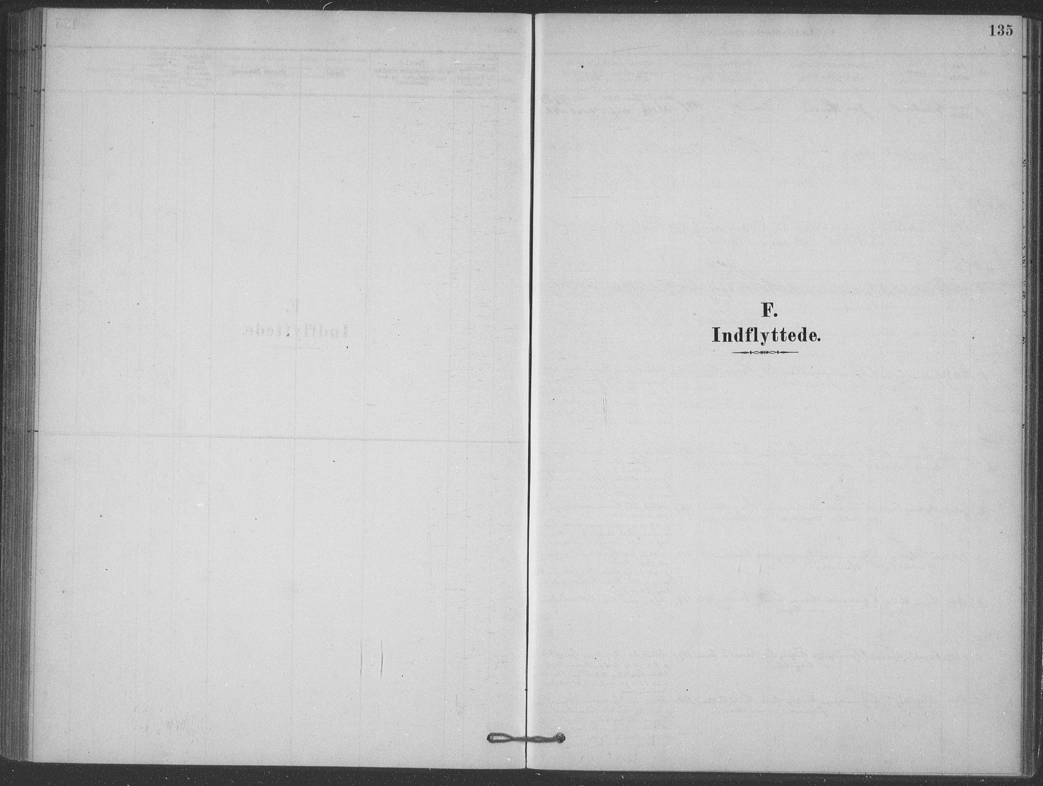 SAKO, Heddal kirkebøker, F/Fb/L0002: Ministerialbok nr. II 2, 1878-1913, s. 135