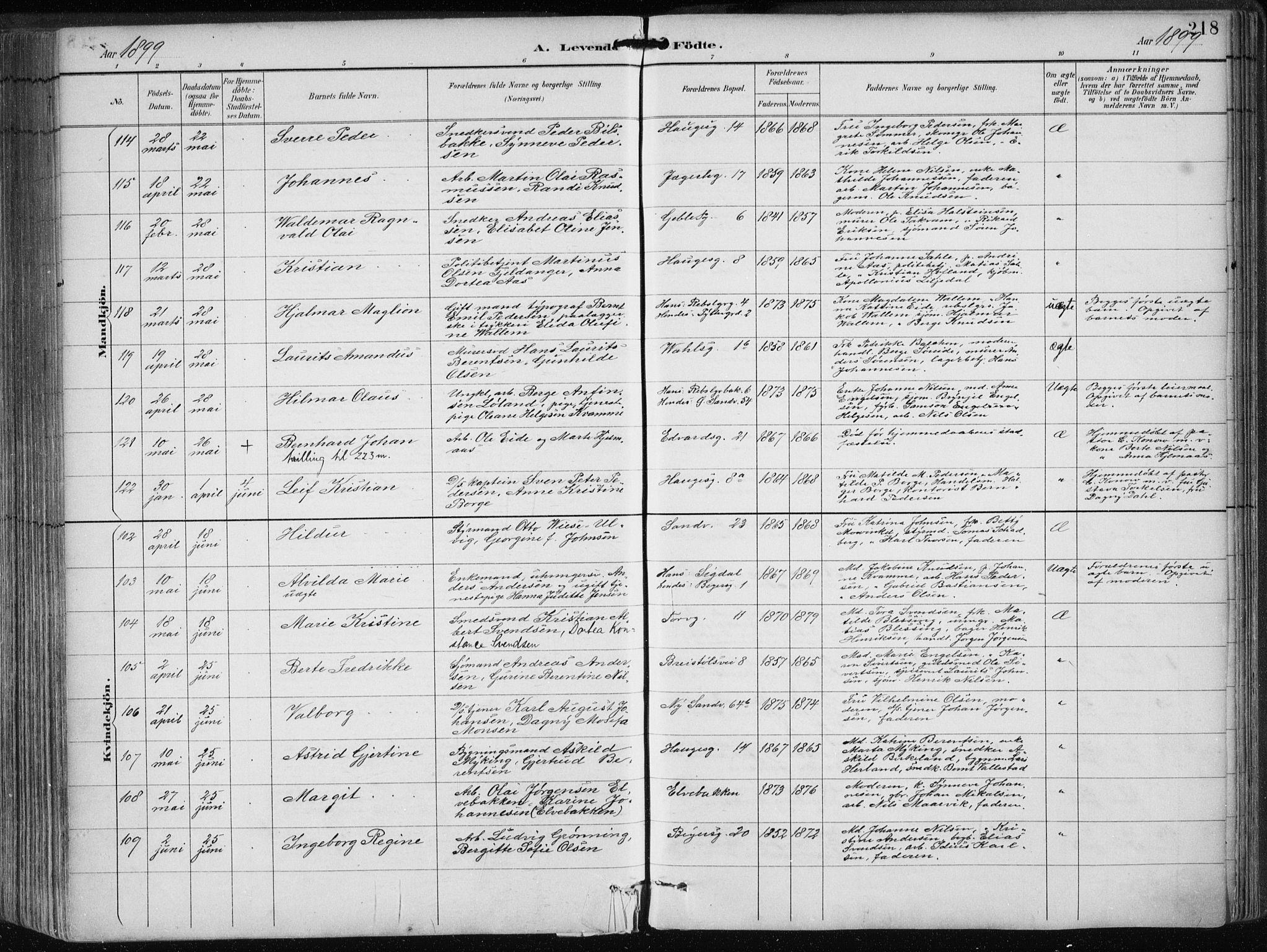 SAB, Sandviken Sokneprestembete, H/Haa/L0005: Ministerialbok nr. B 2, 1891-1901, s. 218
